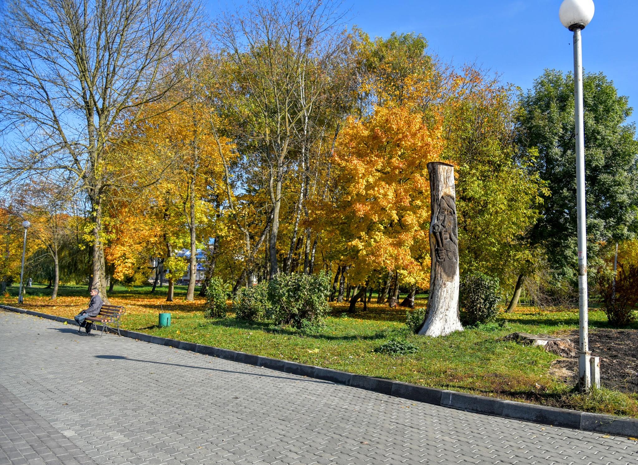 Autumn by mikhailomikhaylovsky