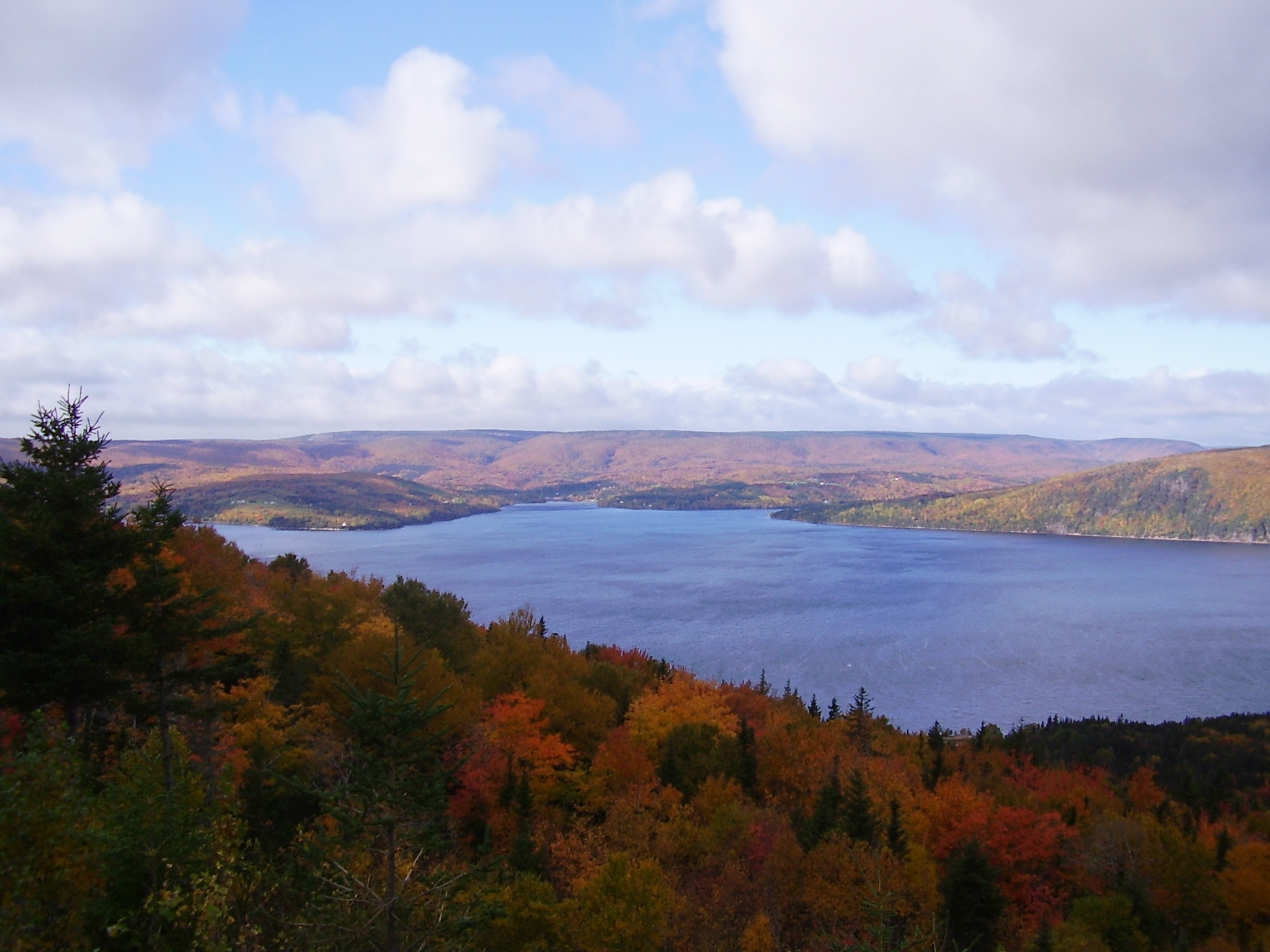 Cape Breton Autumn by Catherine Norman-Donovan