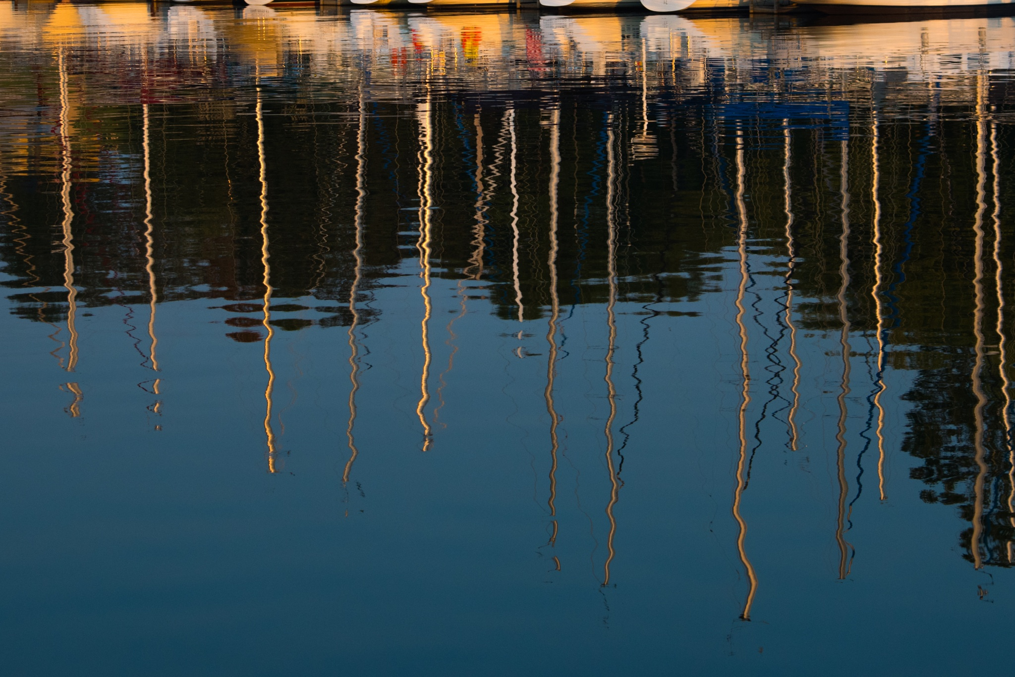 Reflections2 by Neels deConing