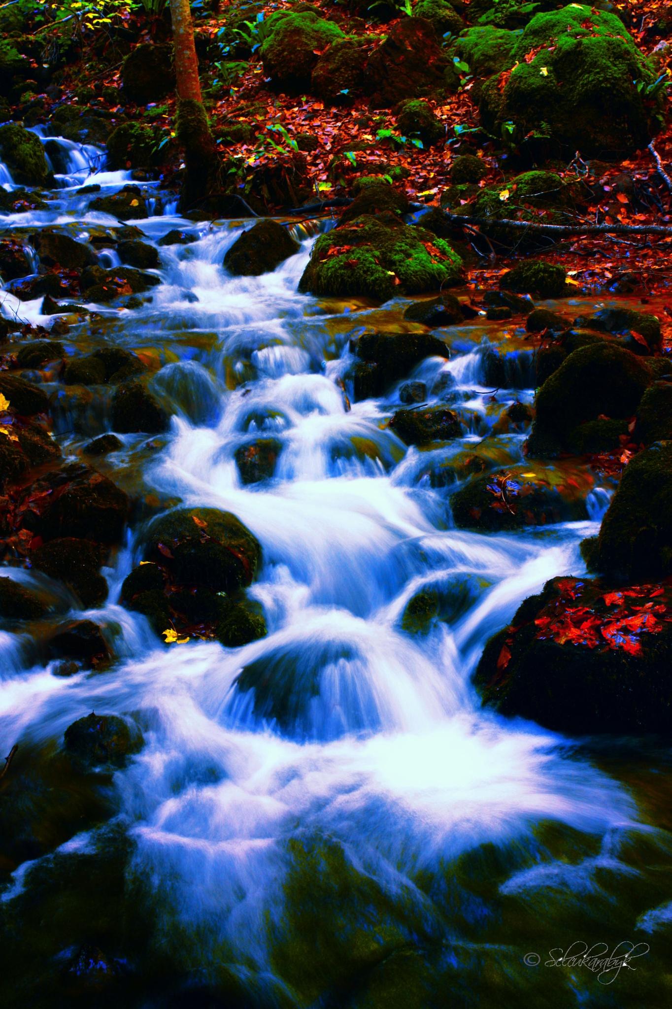Bolu Sevenlakes River by fotobjektif