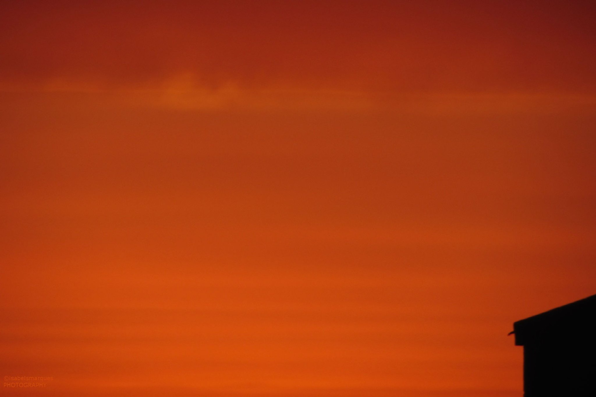 Sunset by isabelsmarques
