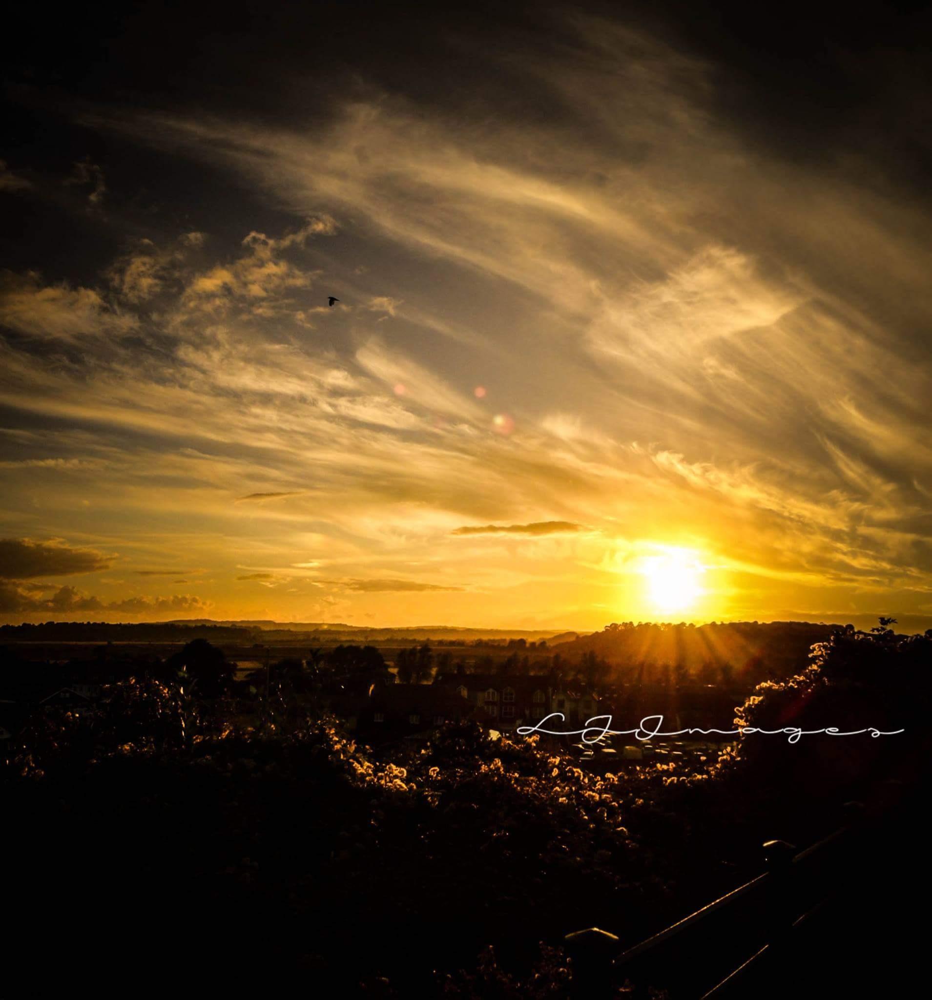 Rye Sunset by lynjenner927