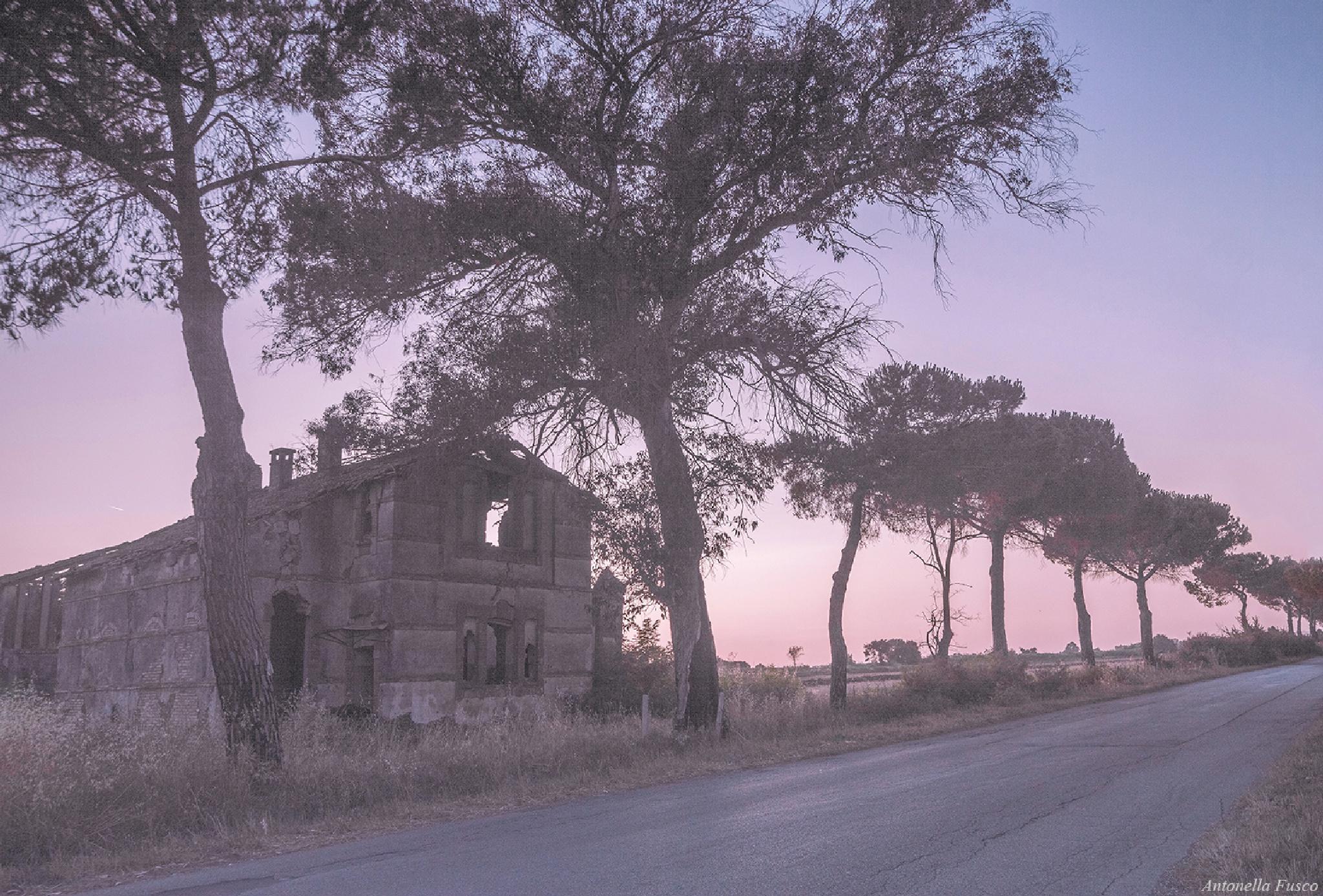 Fuori strada by antonellafusco35