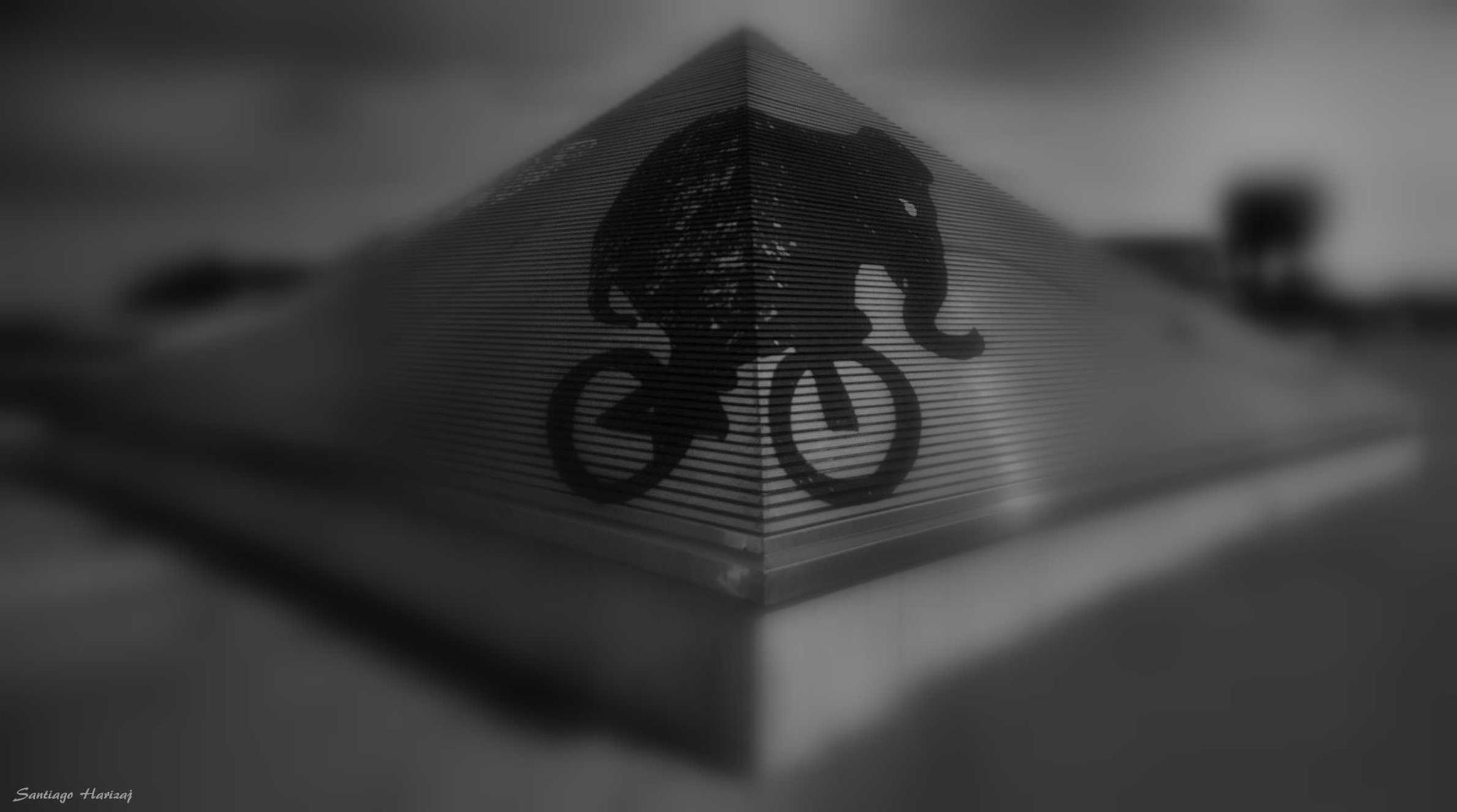 elefante by Santiago Harizaj
