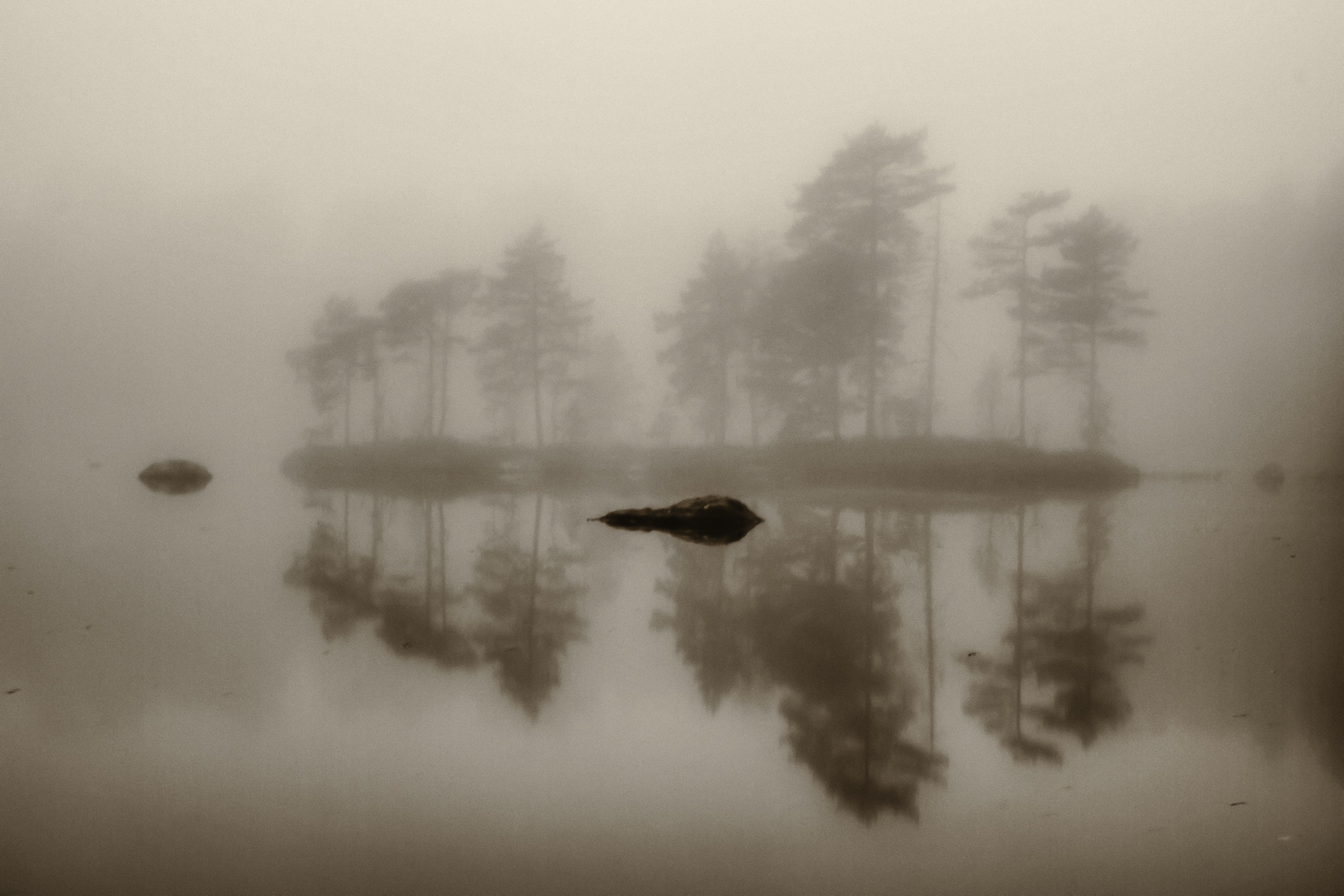 Silent morning by Ben Gt
