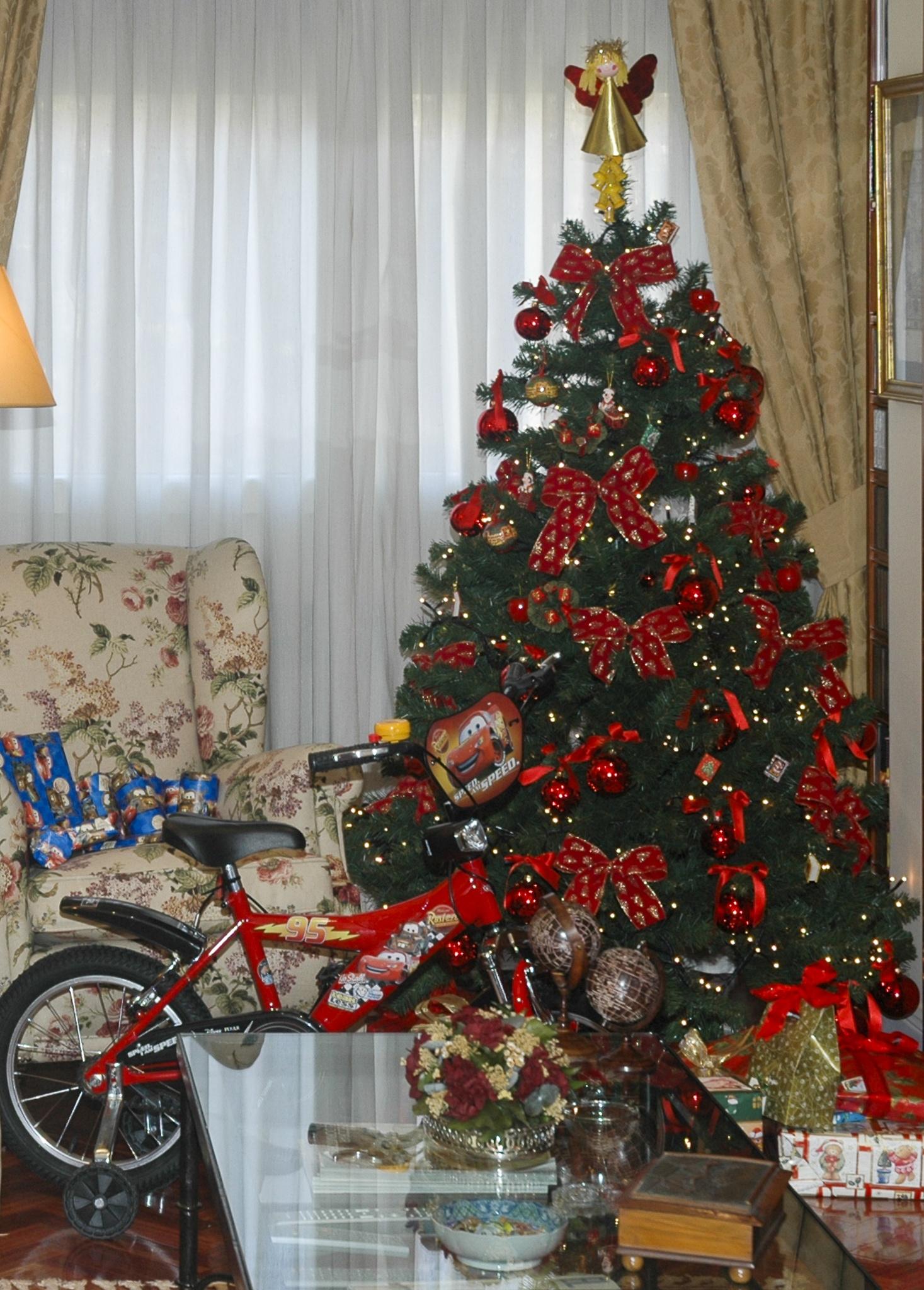 Christmas tree by Jose Manuel Navarro
