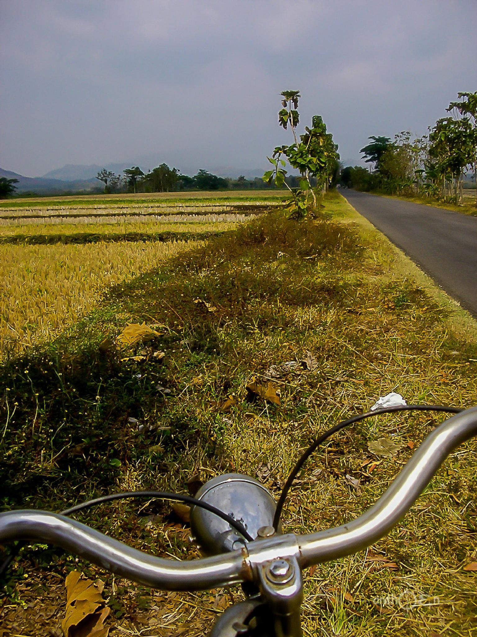riding on the road by Anthoen Luciferano Karnanta