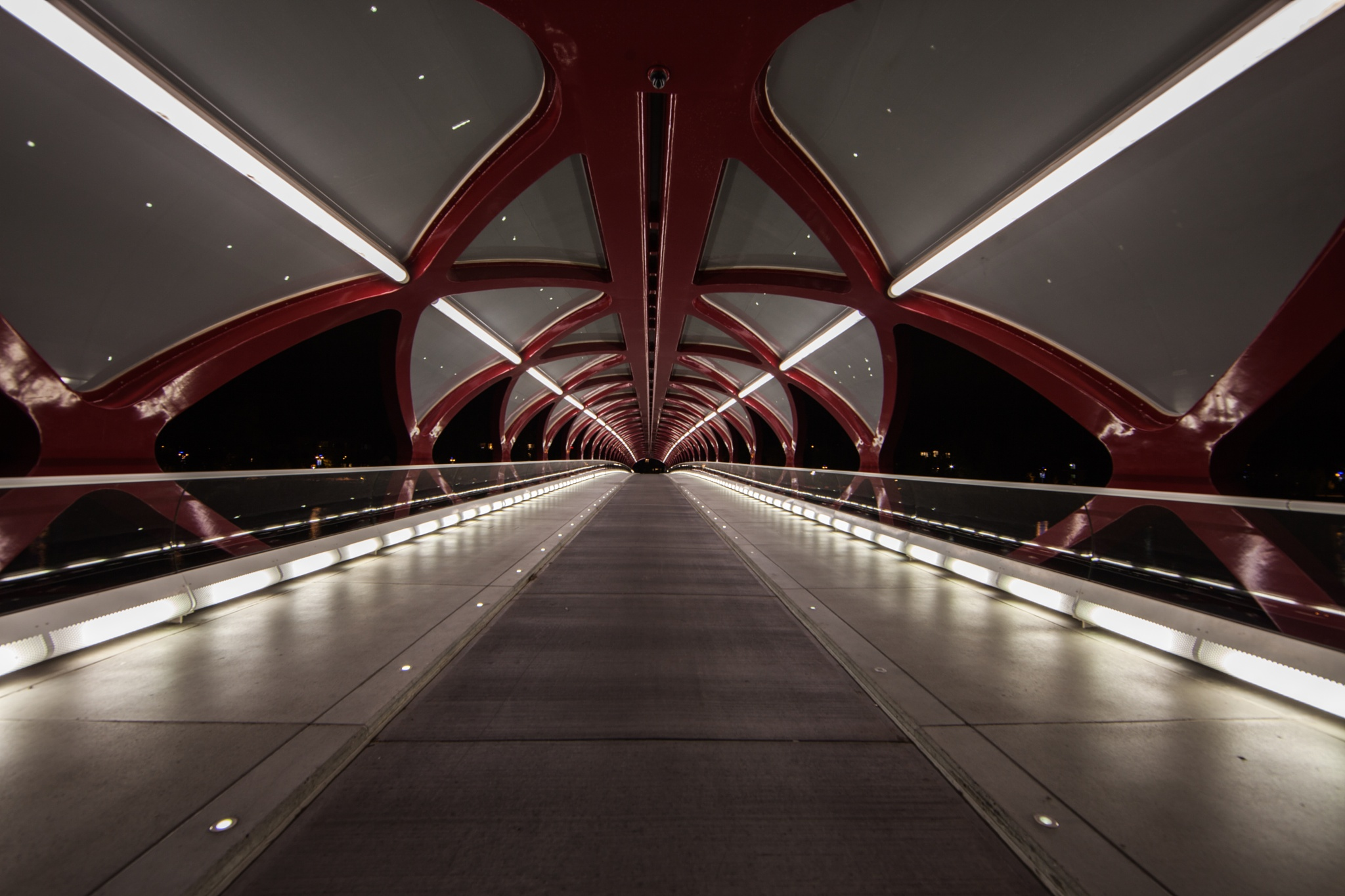 The Calgary Peace Bridge by John Watson