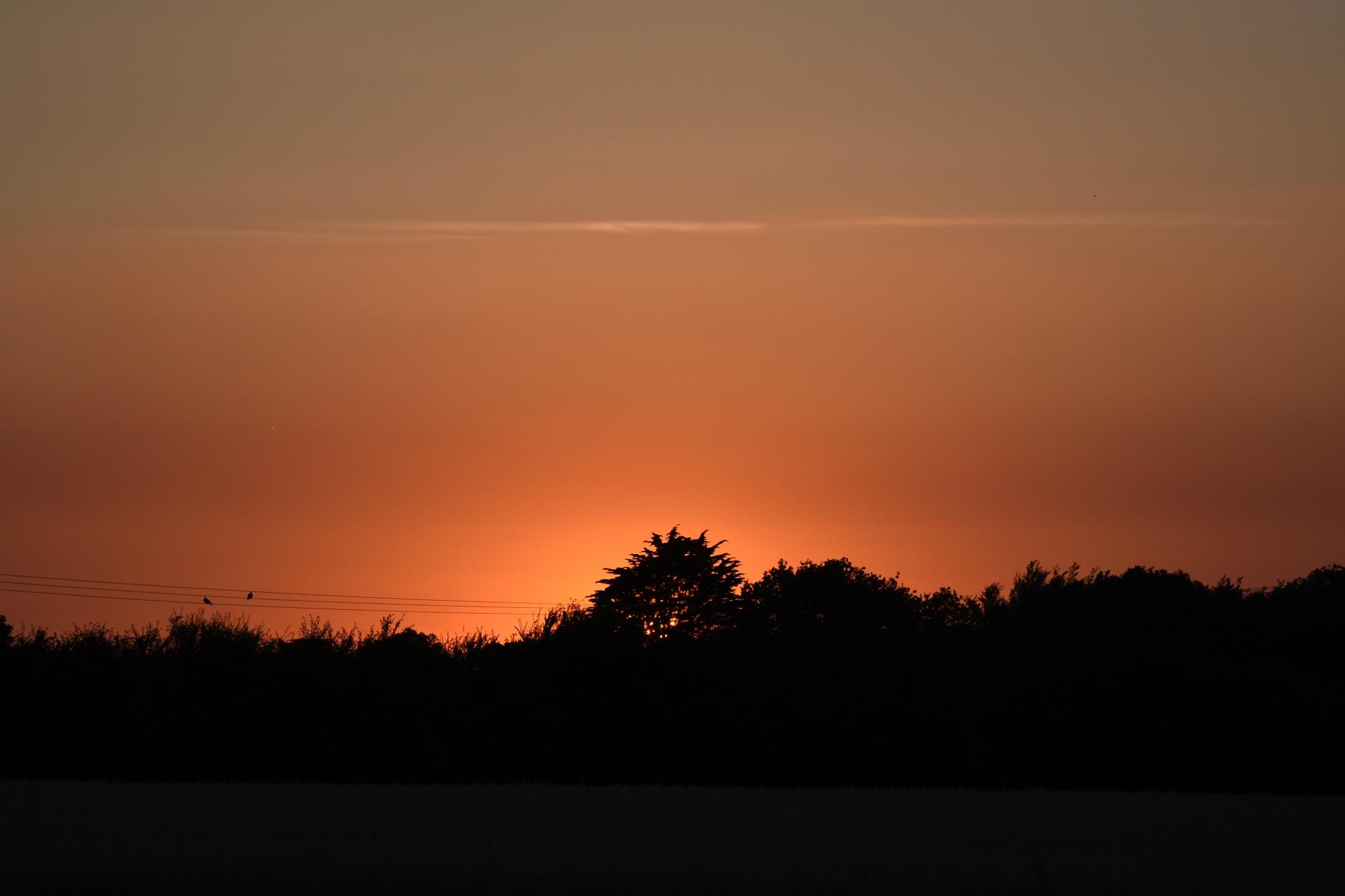 sunset by zetec09