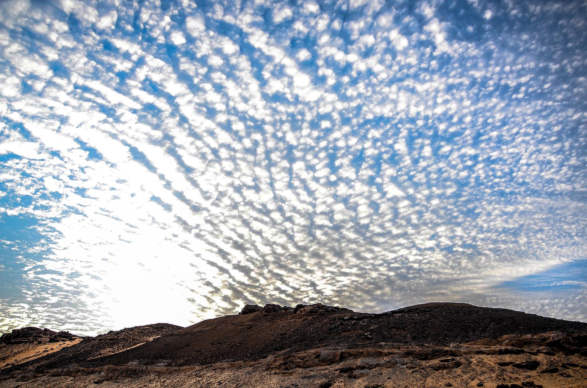 aswan_egypt by engy_samy