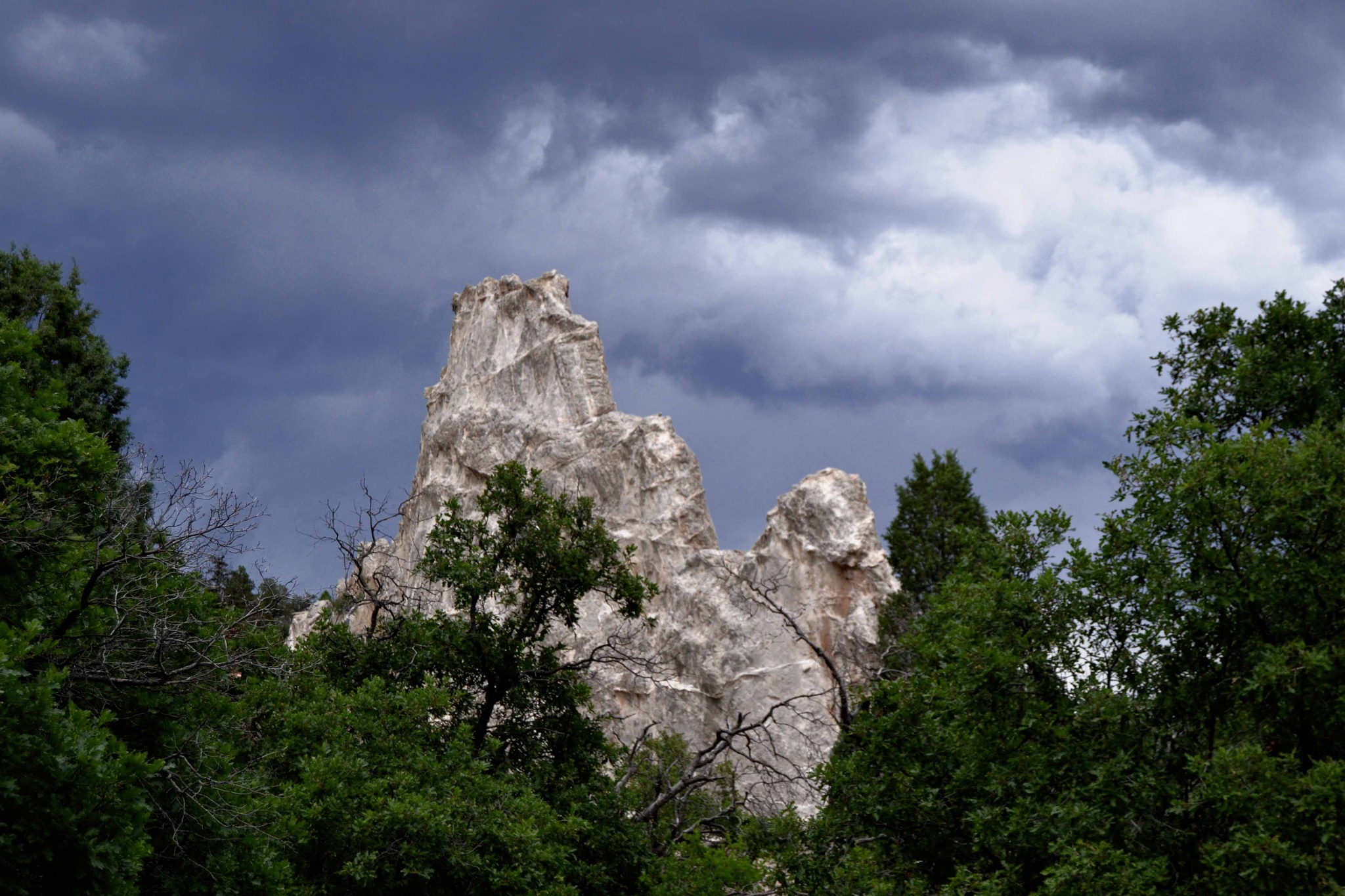 At The Garden of the Gods by Tasha Horn-Findley