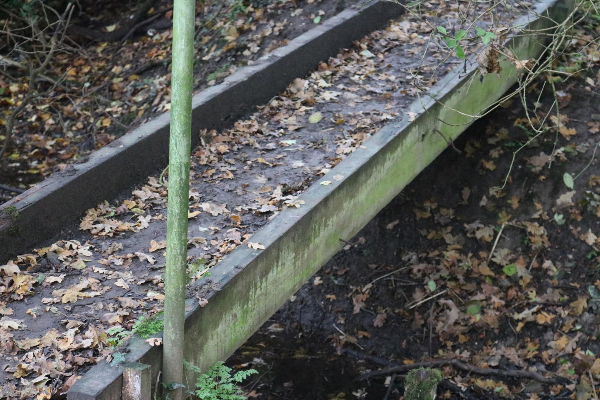 wooden bridge by Josephine