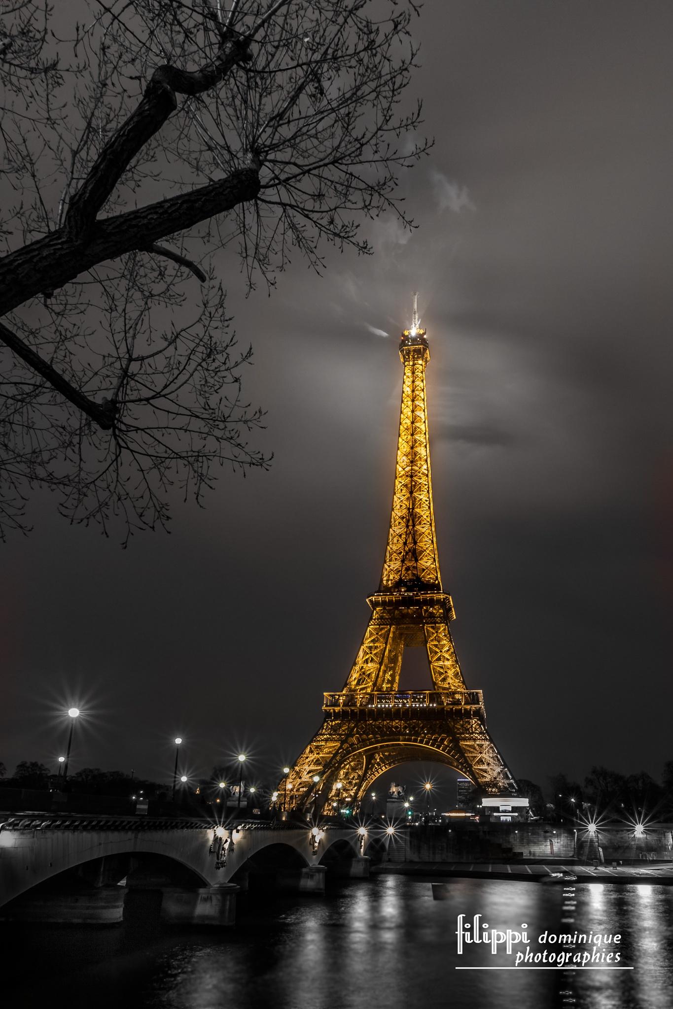 paris by fifi17