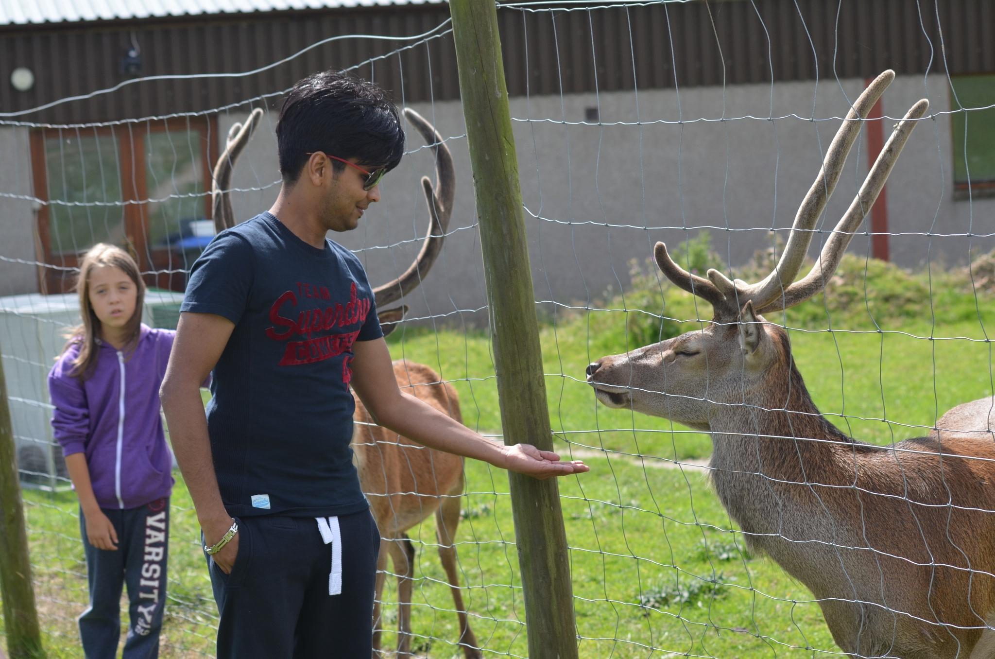 With Deer by Raïyan Fahïm