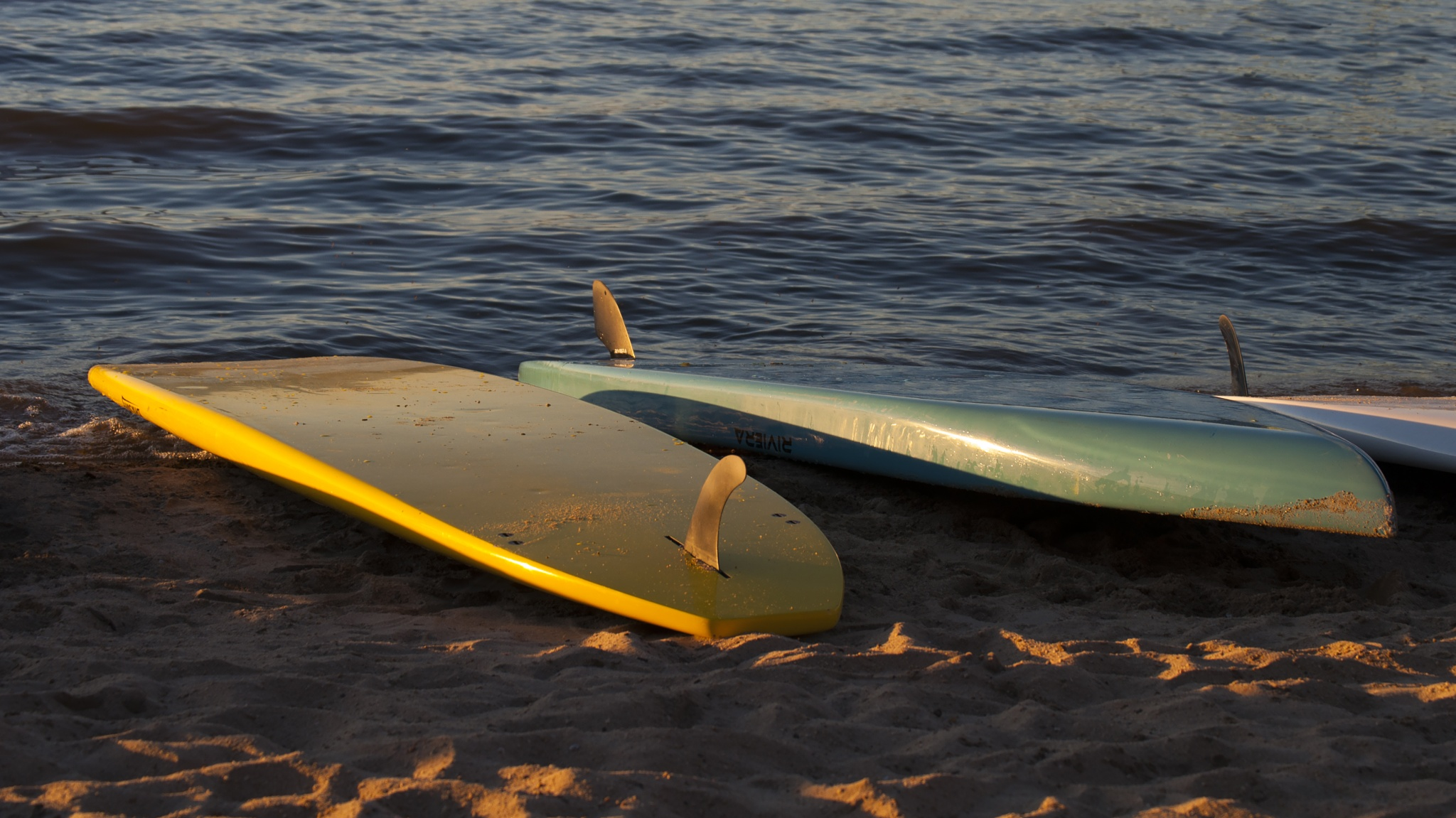 Beached Boards by Neal Lacroix