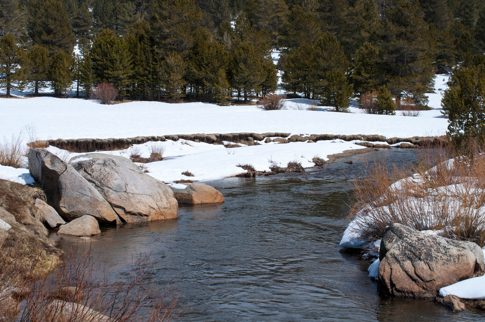 Carson River, west fork by Neal Lacroix