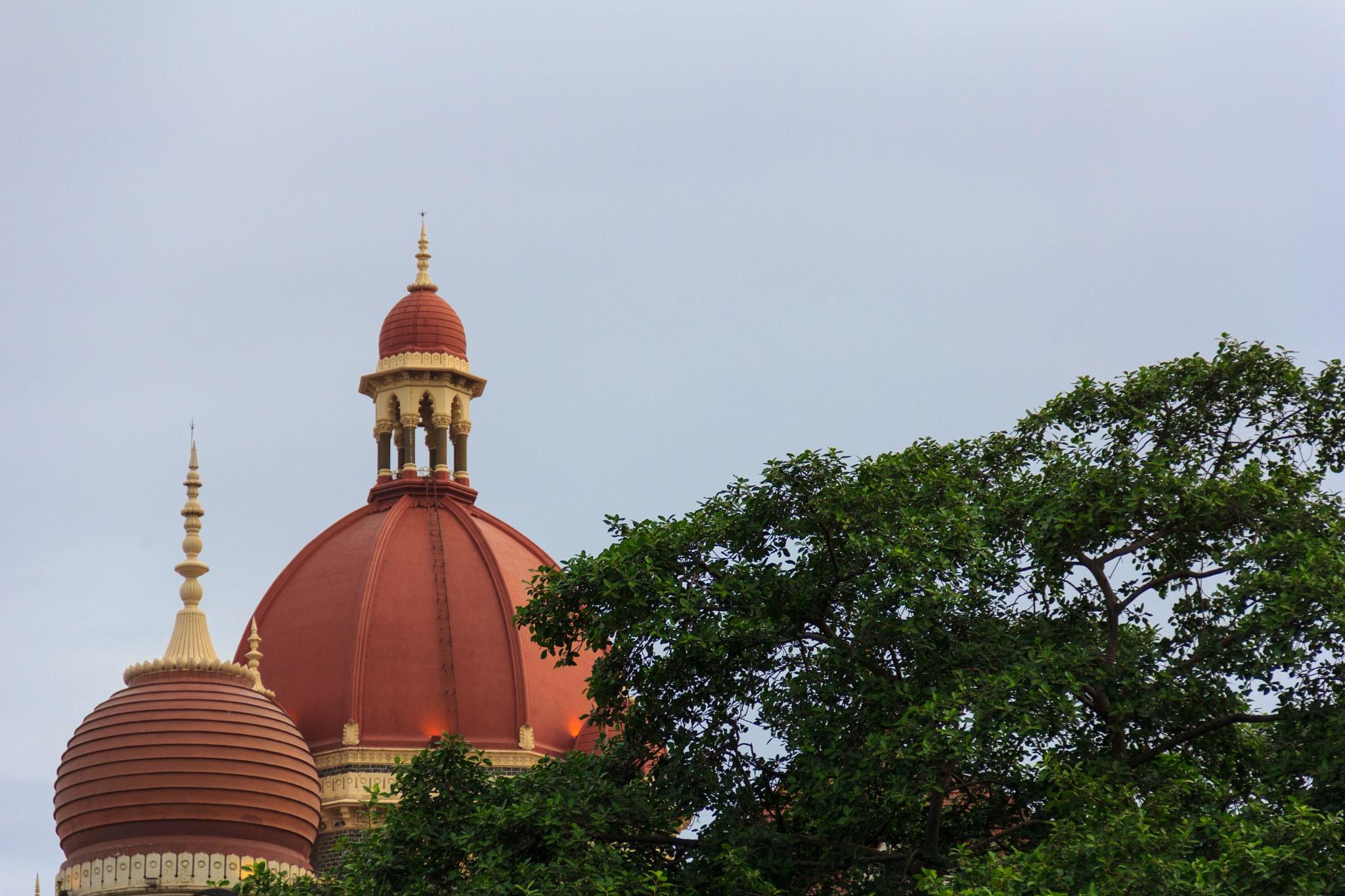 The Taj by PS Rajesh