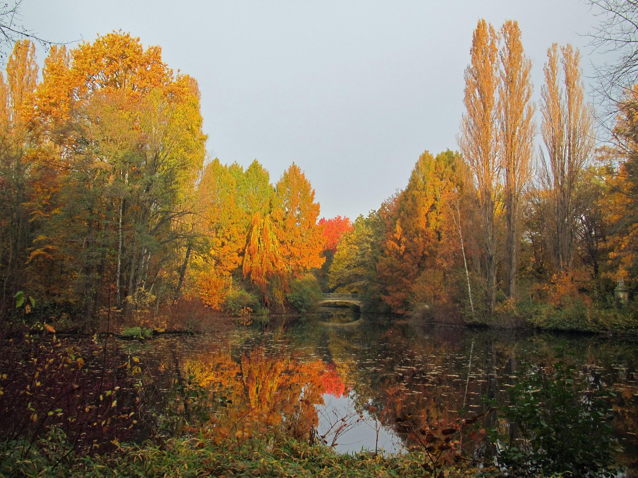 autumn in Berlin by Elli