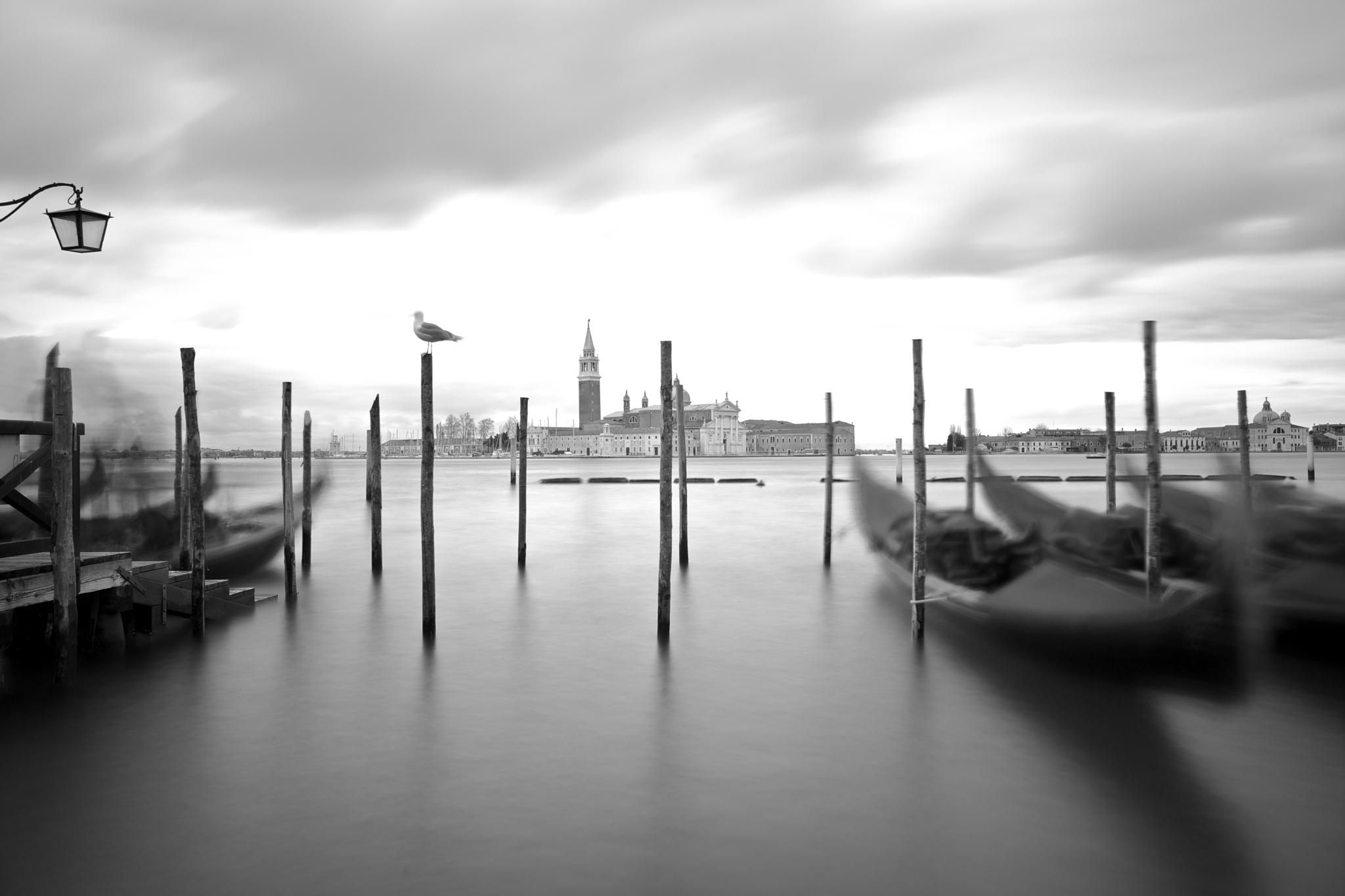 Bella Venezia... by adonismalamos1