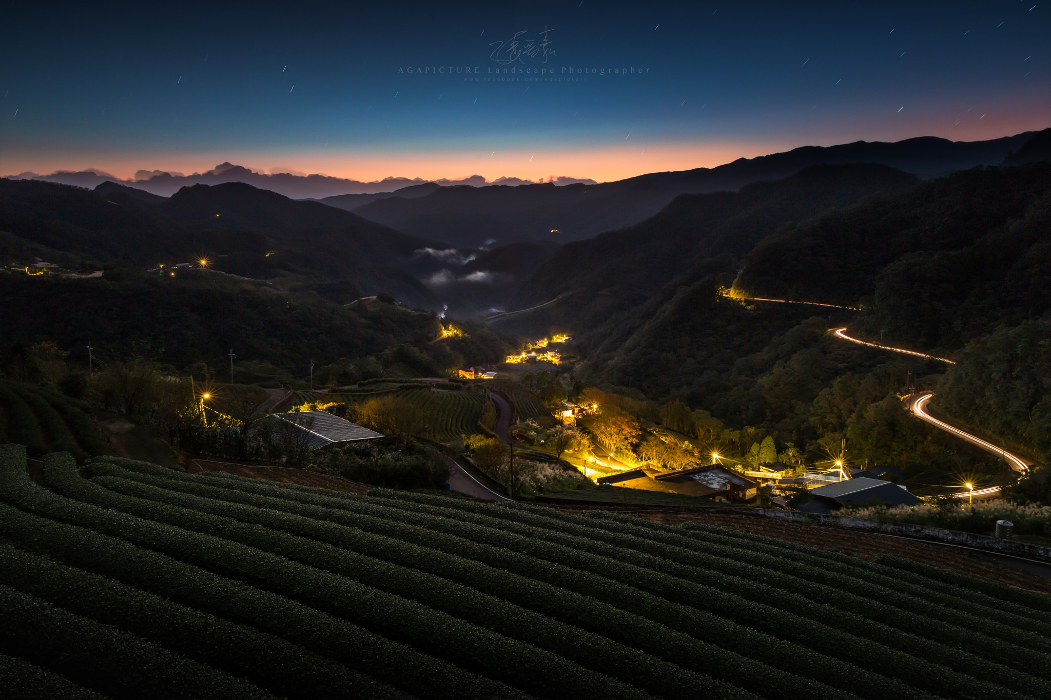 The tea garden before sunrise by agapicture