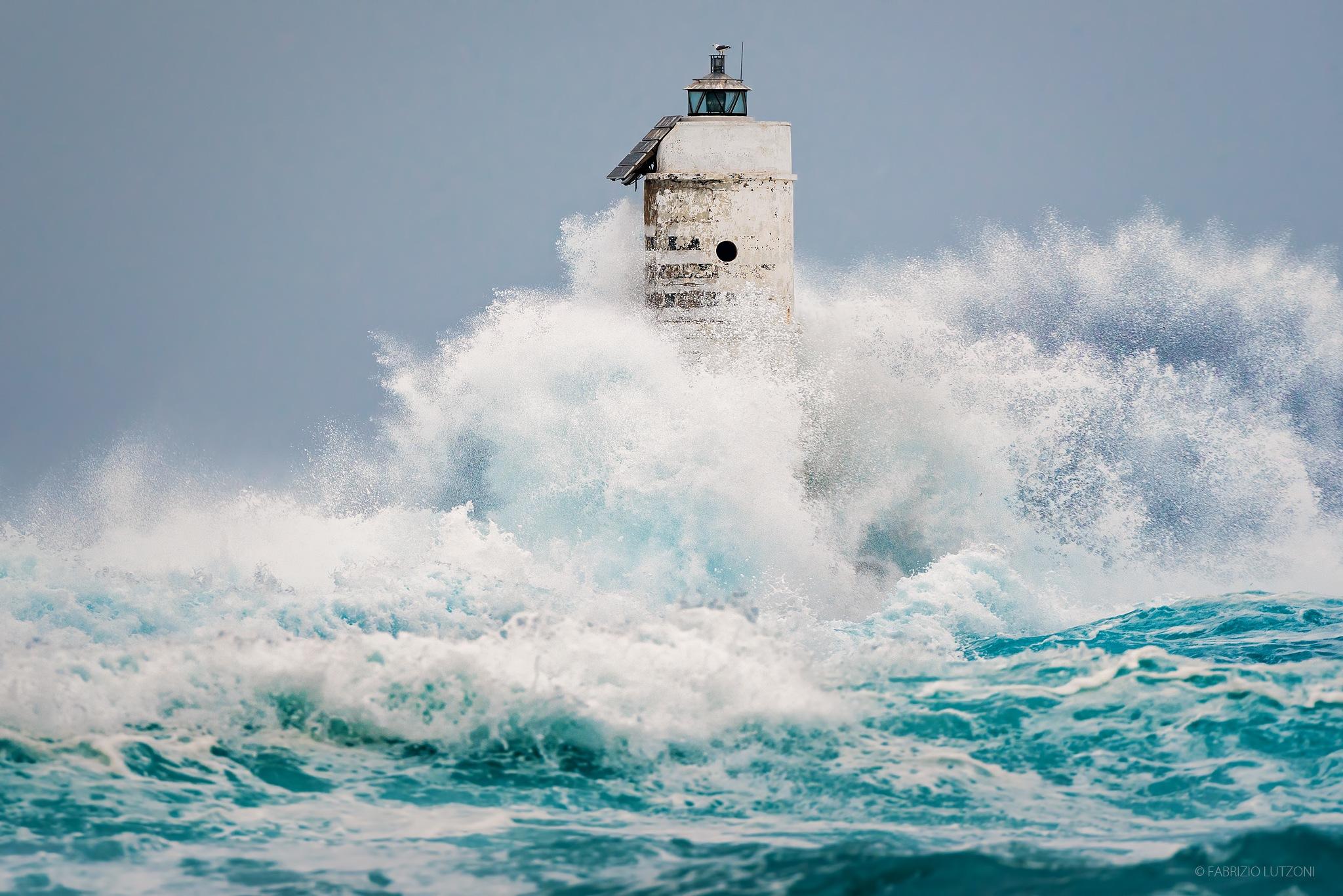 Storm by Fabrizio Lutzoni