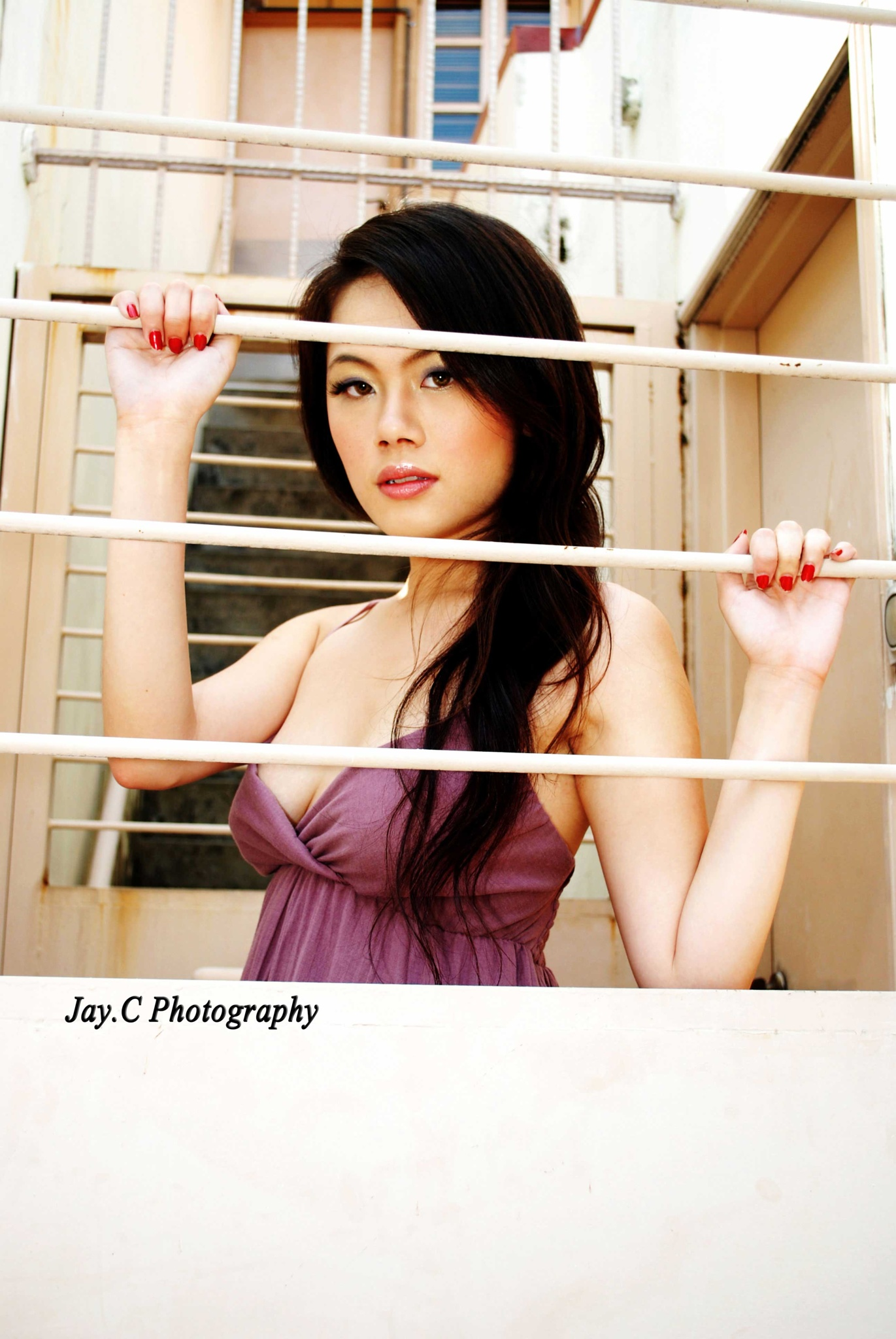 Fenced by Jay.C Studios