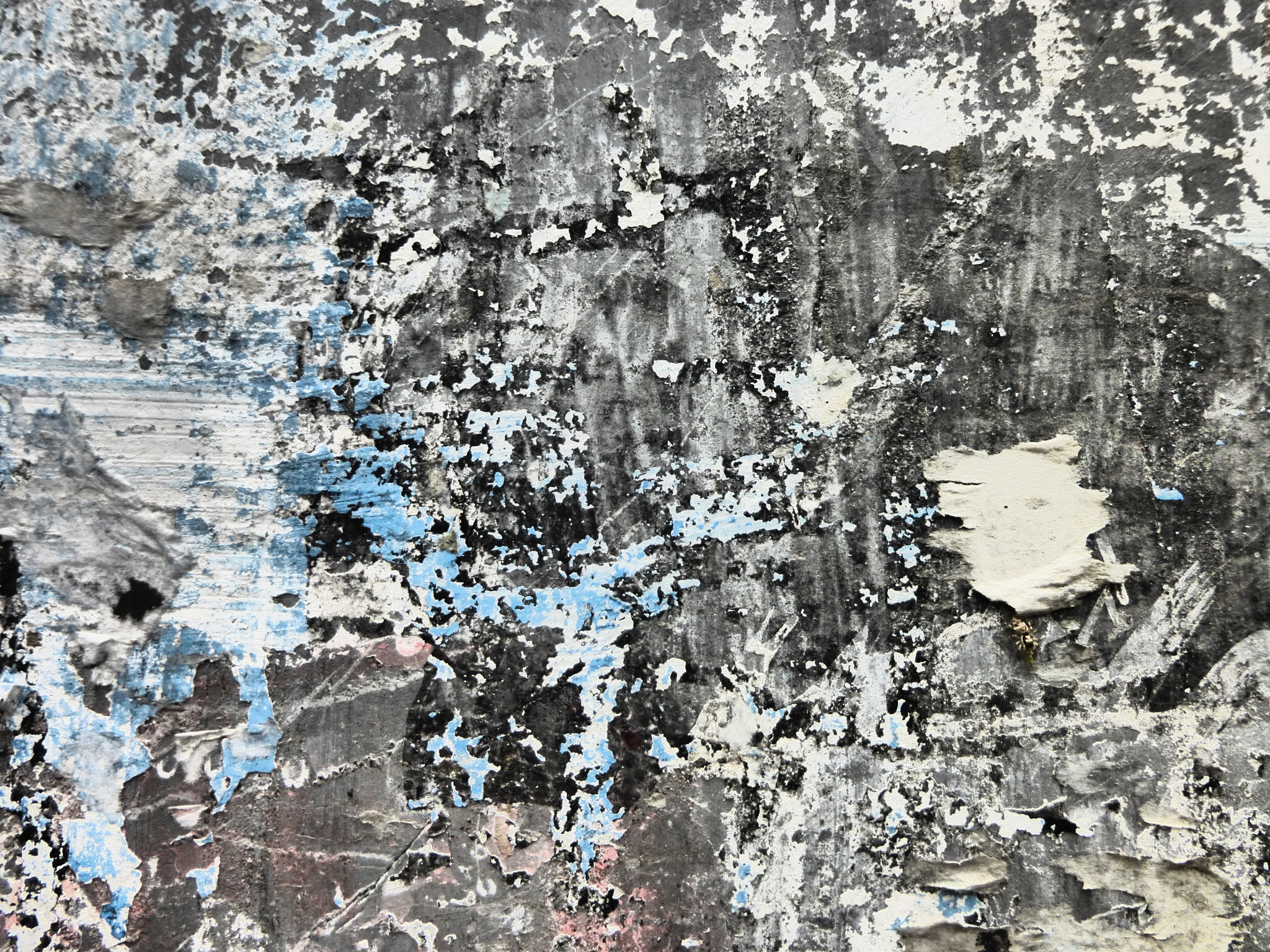 Texture Montevideo by FredWillem