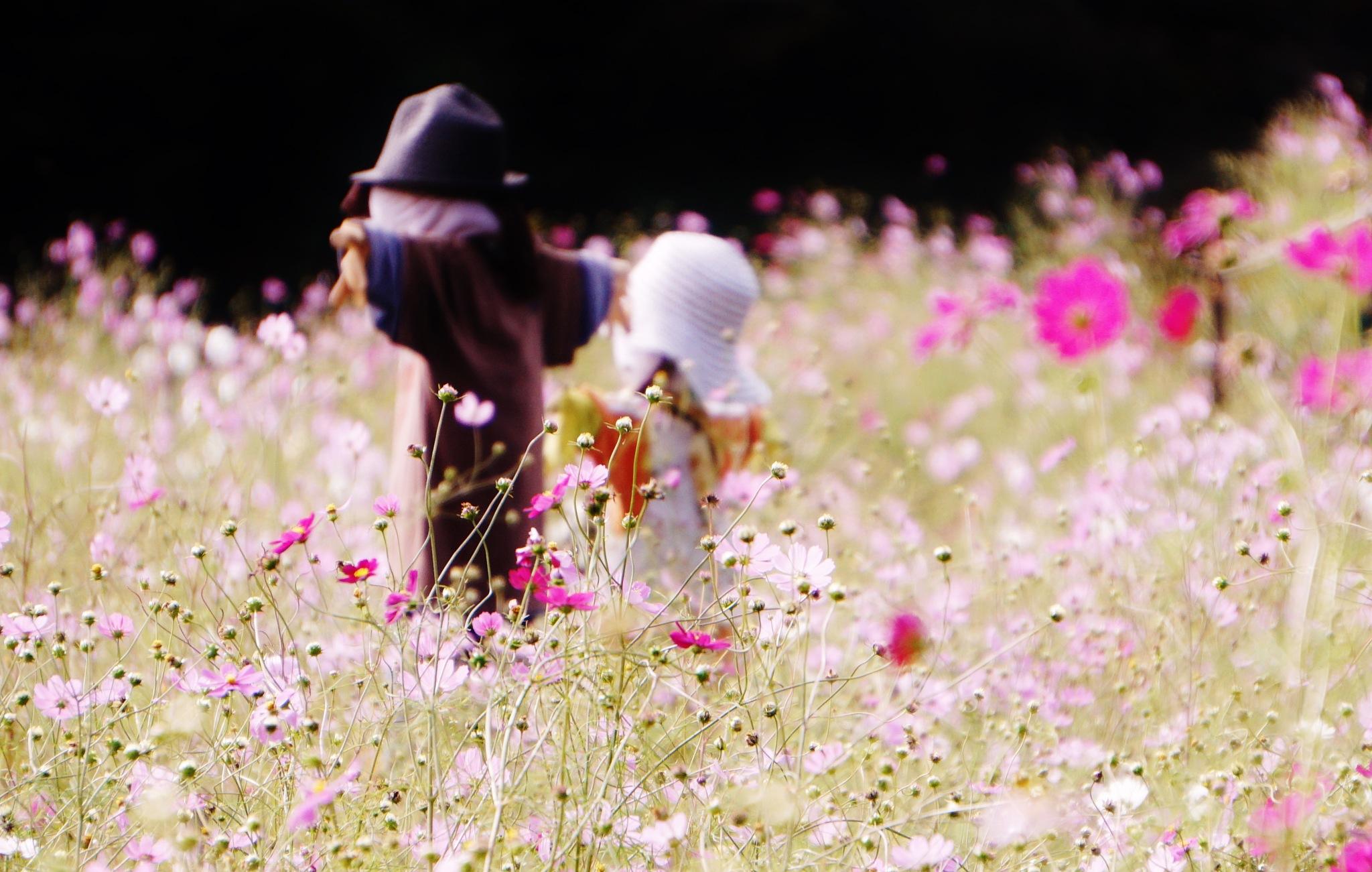 Untitled by IchiroTanaka