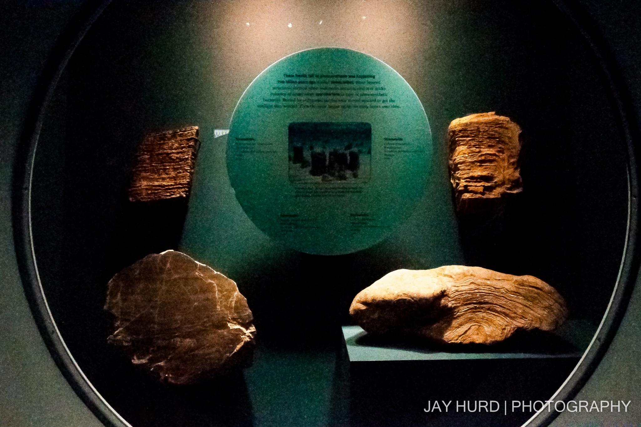 Rock Exhibit by Jay Hurd