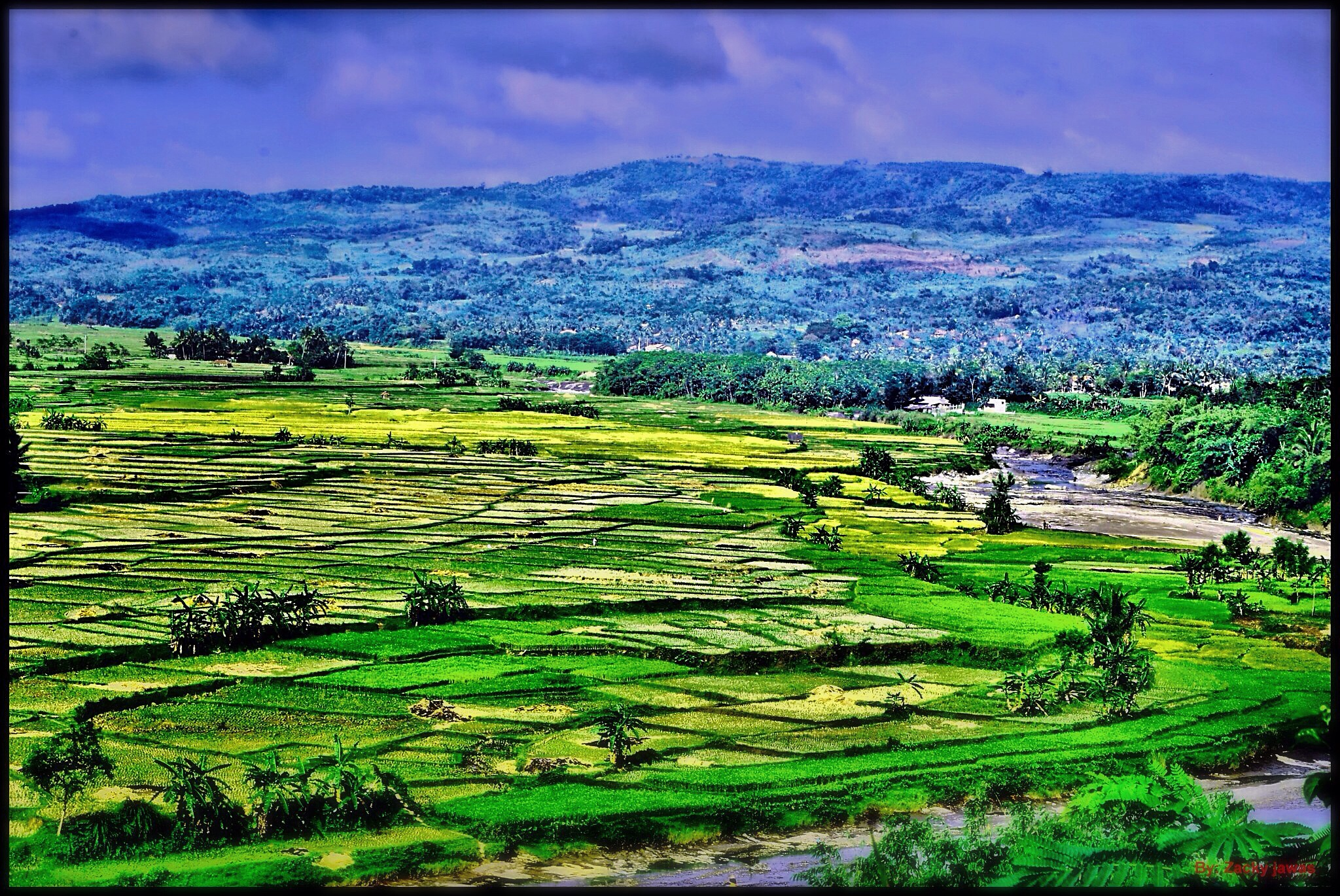 The land of my country by Muzakir Jawas