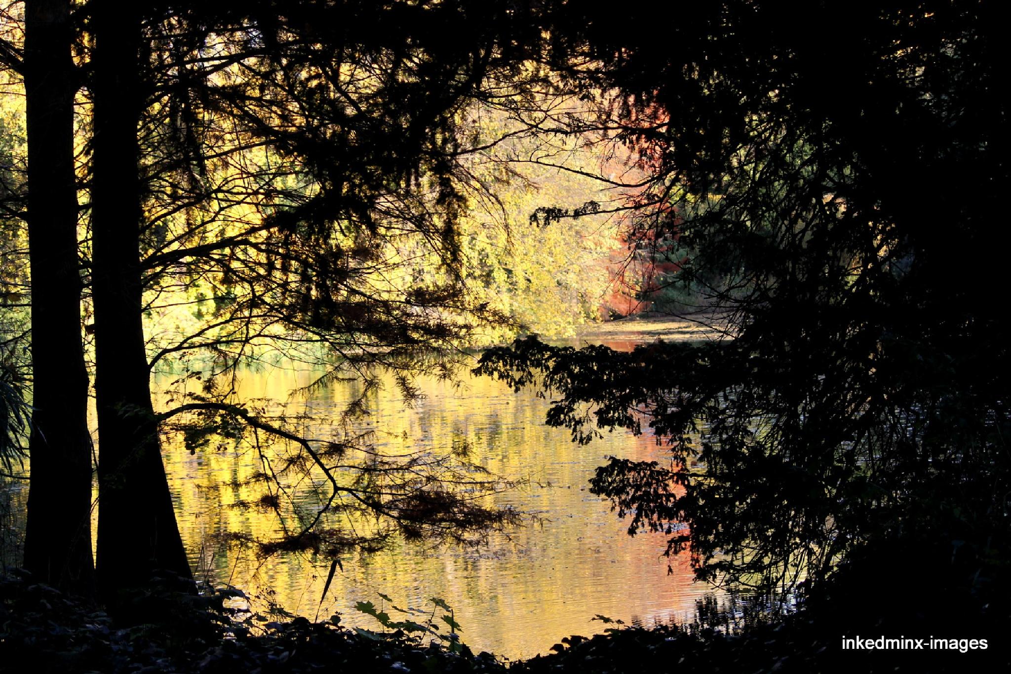 Autumn colours by Miranda Inked-minx Watkins