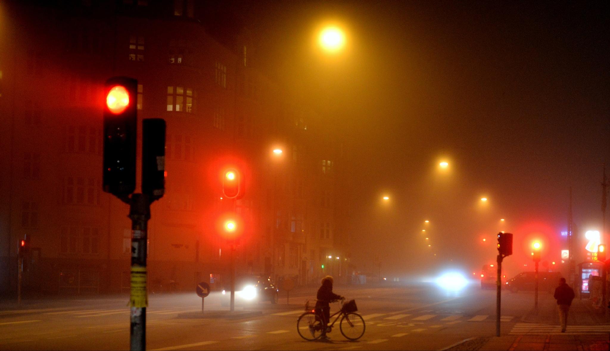 The fog by pmpkannan