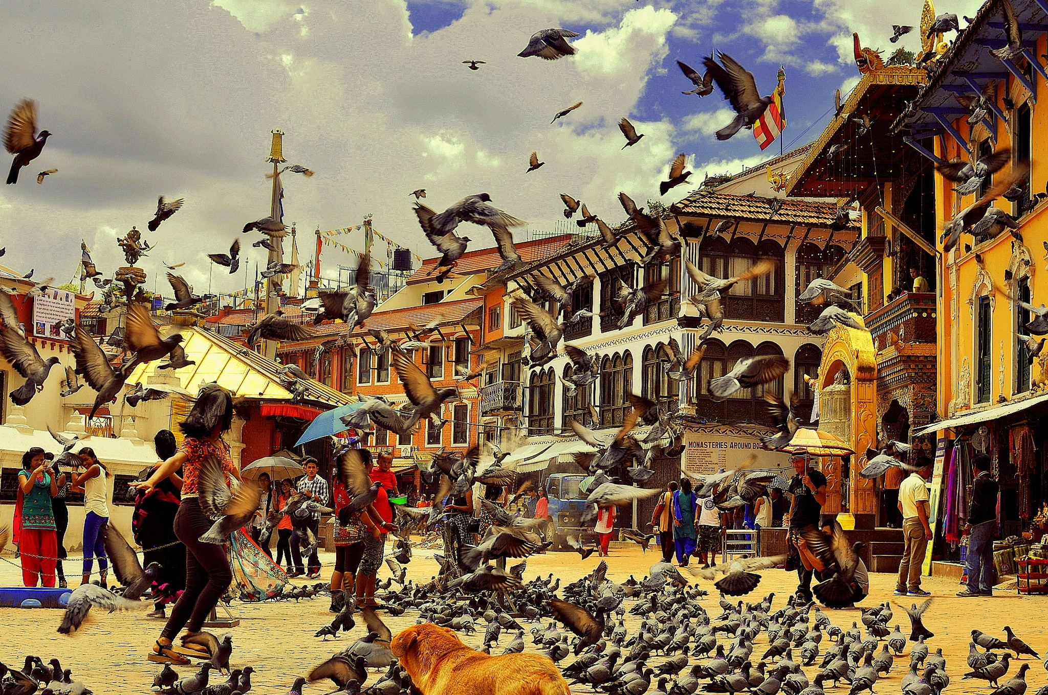 beautiful Nepal  by ahmeD aDel