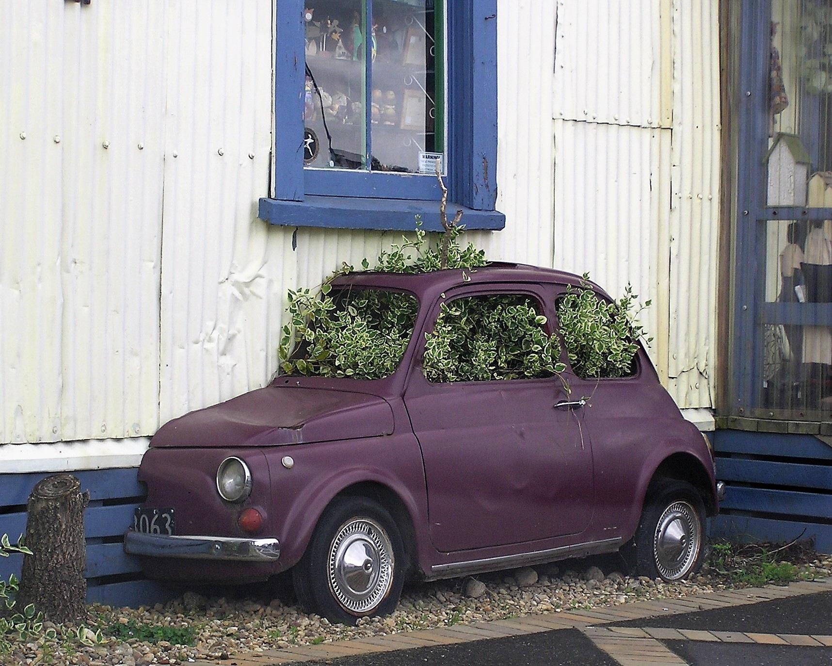 Plant Box by Luigi Cappel
