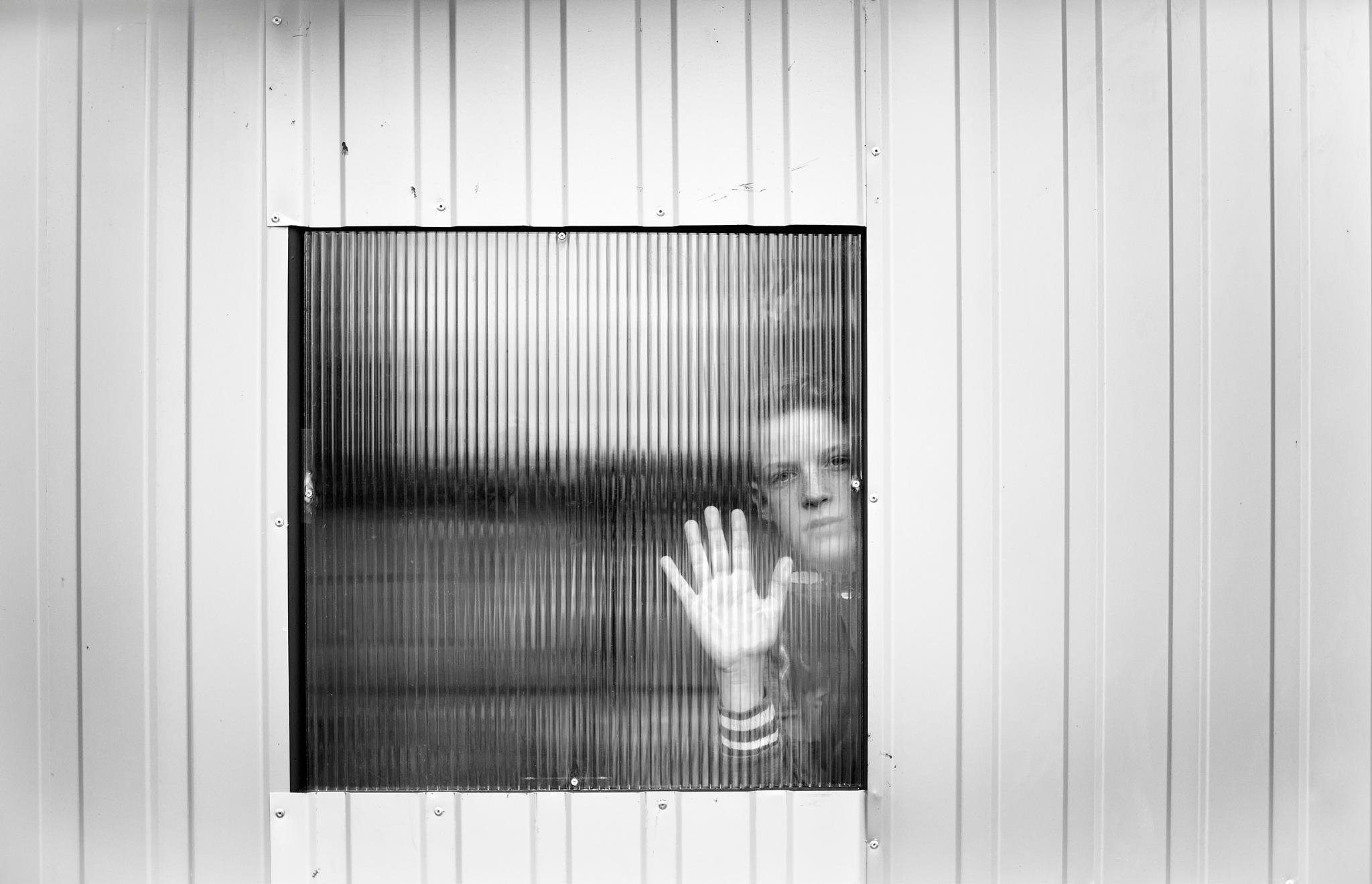 Hello Stranger! by Katalin Borsik-Budai