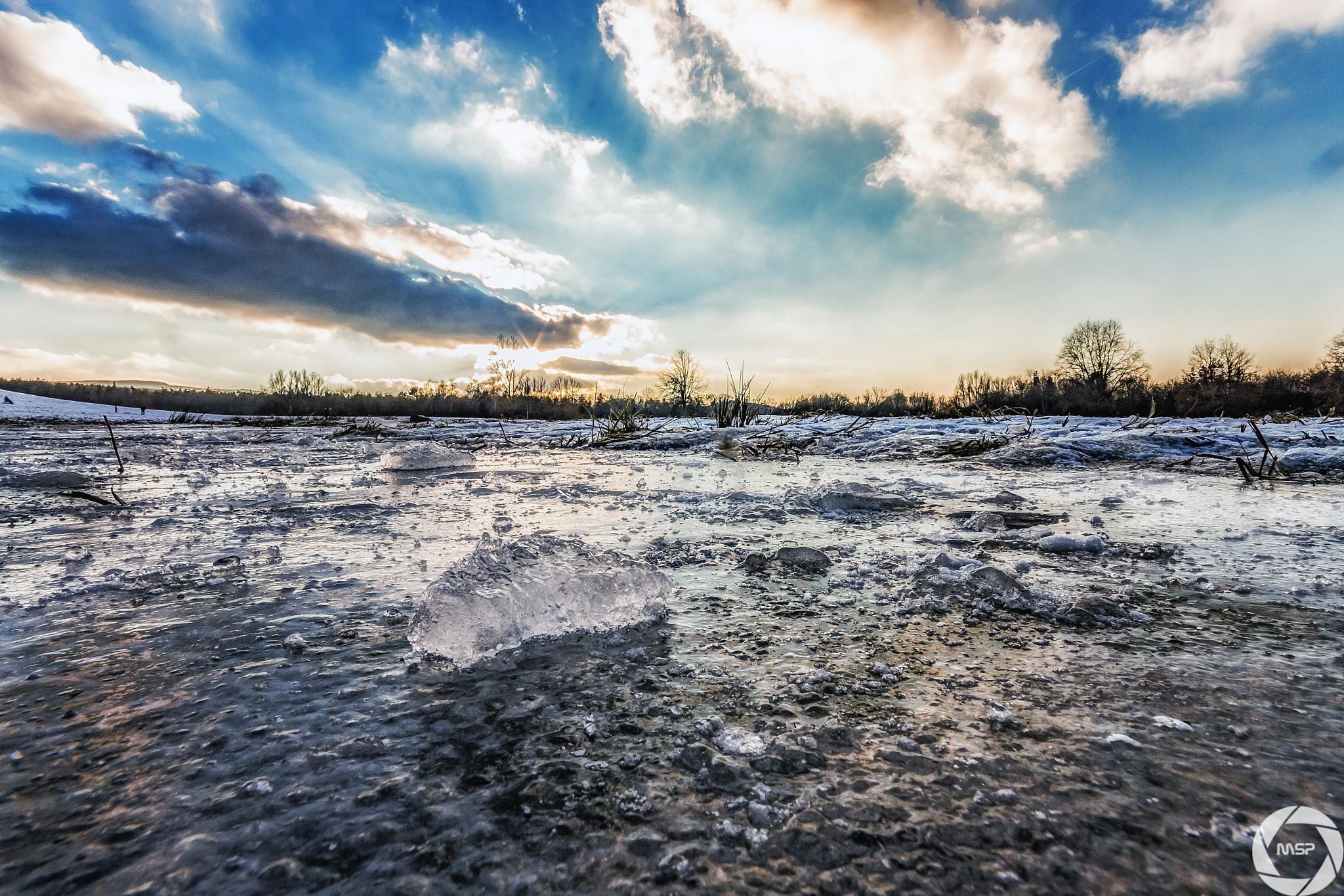 Cold by Martin Schunack