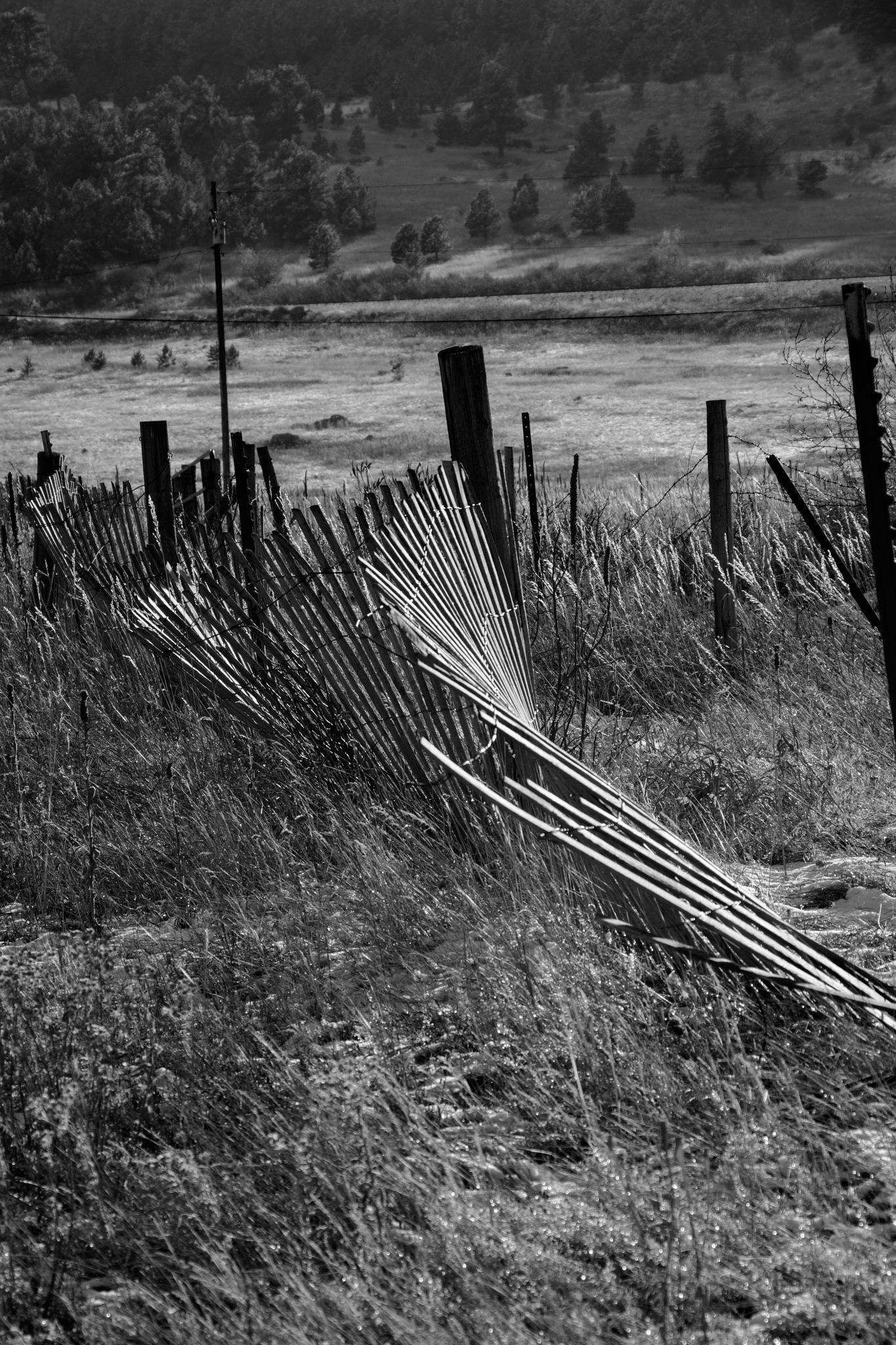 Broken Fence by Benjamin Hernandez