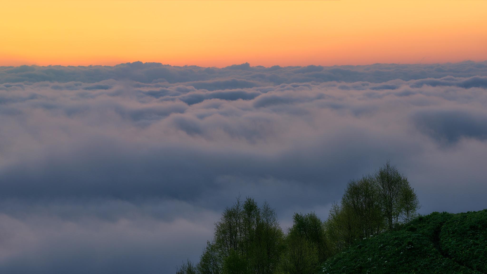 I'll show you the dawn by Alexander Plekhanov