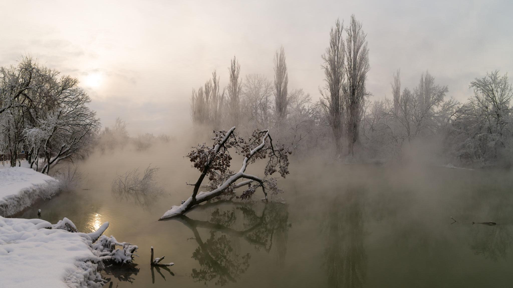 Winter morning by Alexander Plekhanov