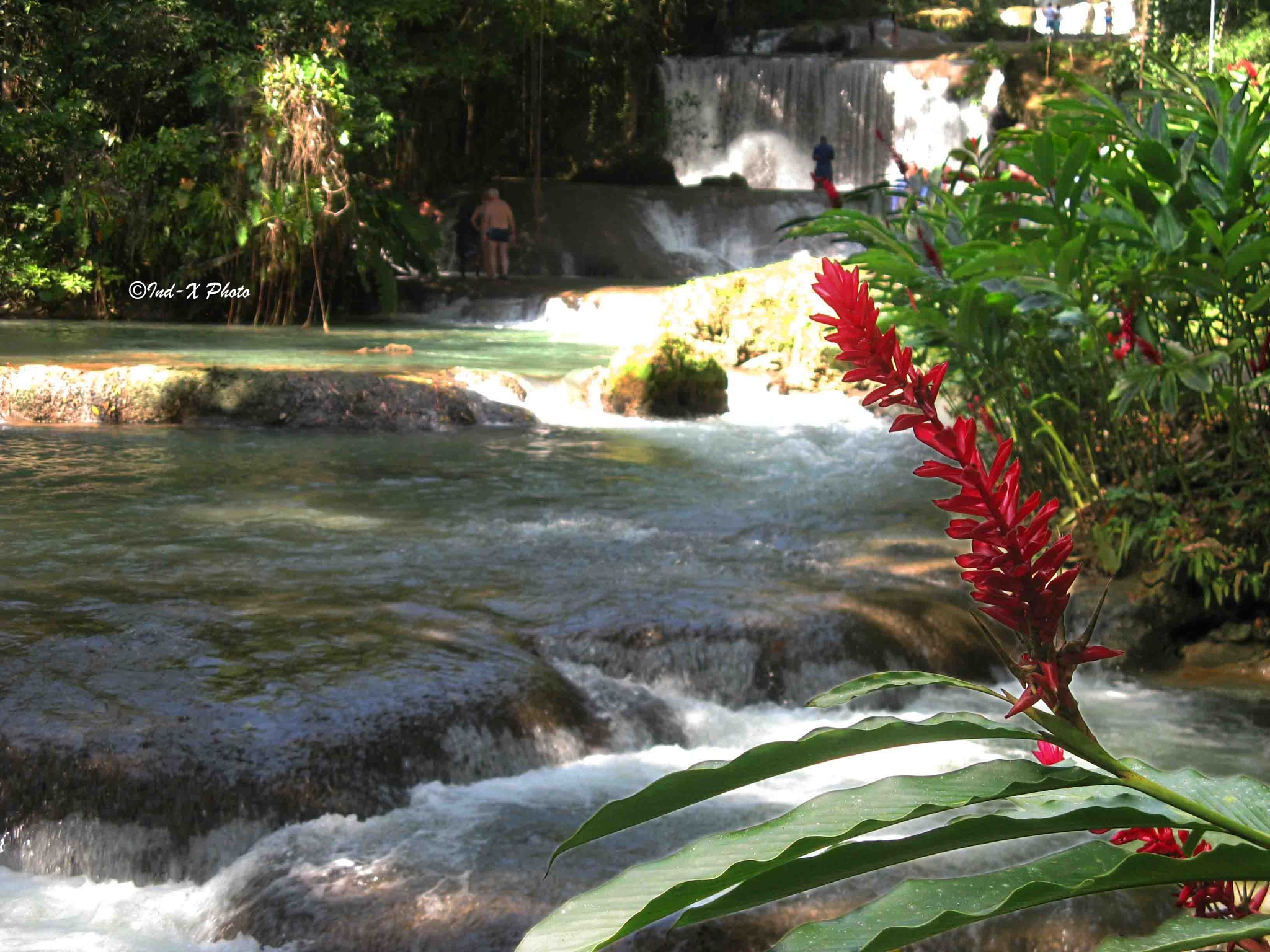 YS Falls a warm afternoon in Jamaica... Ya Mon! by Normand Auger