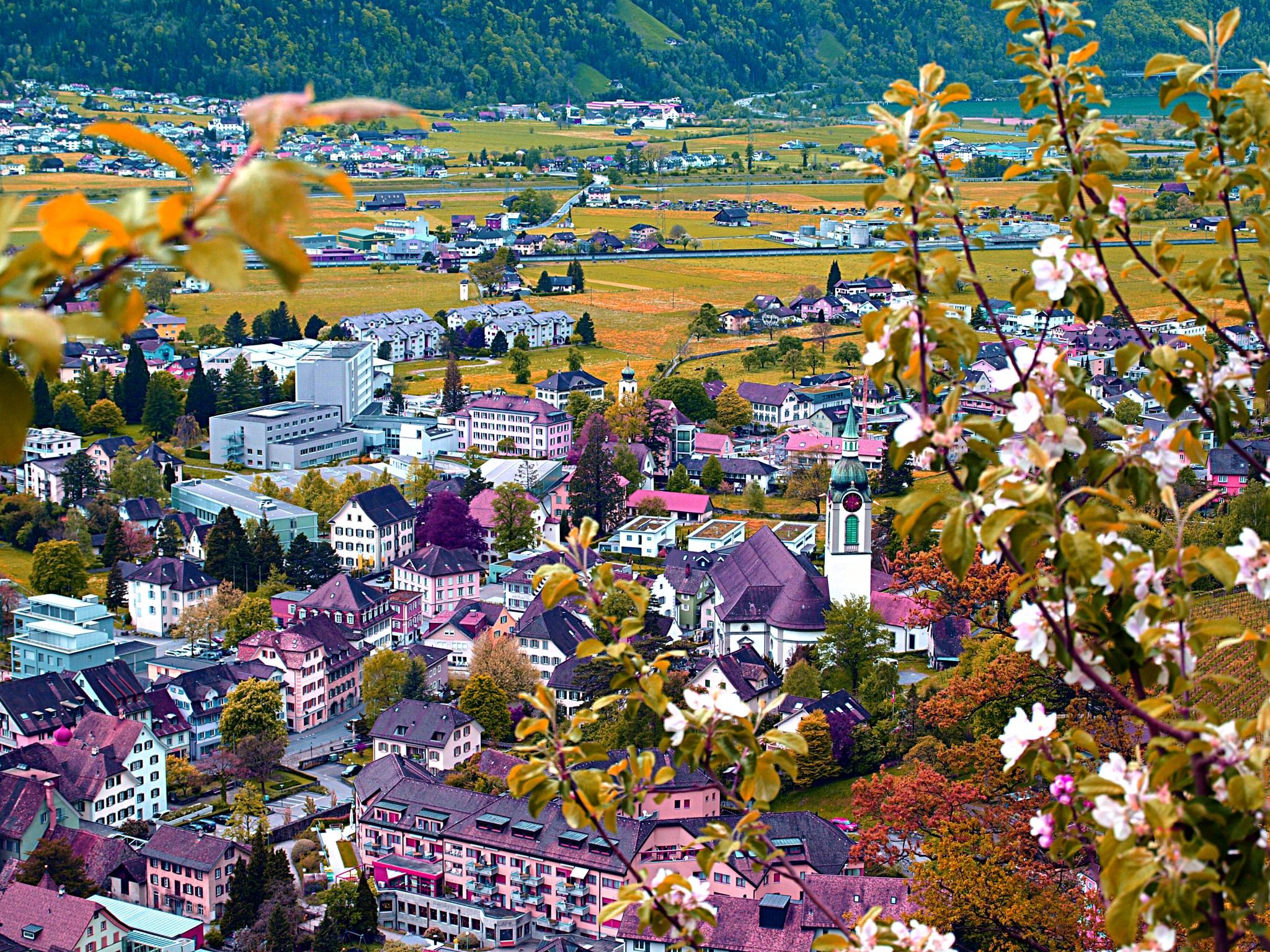 View of Altdorf by Rudy Tarrazona Guacena