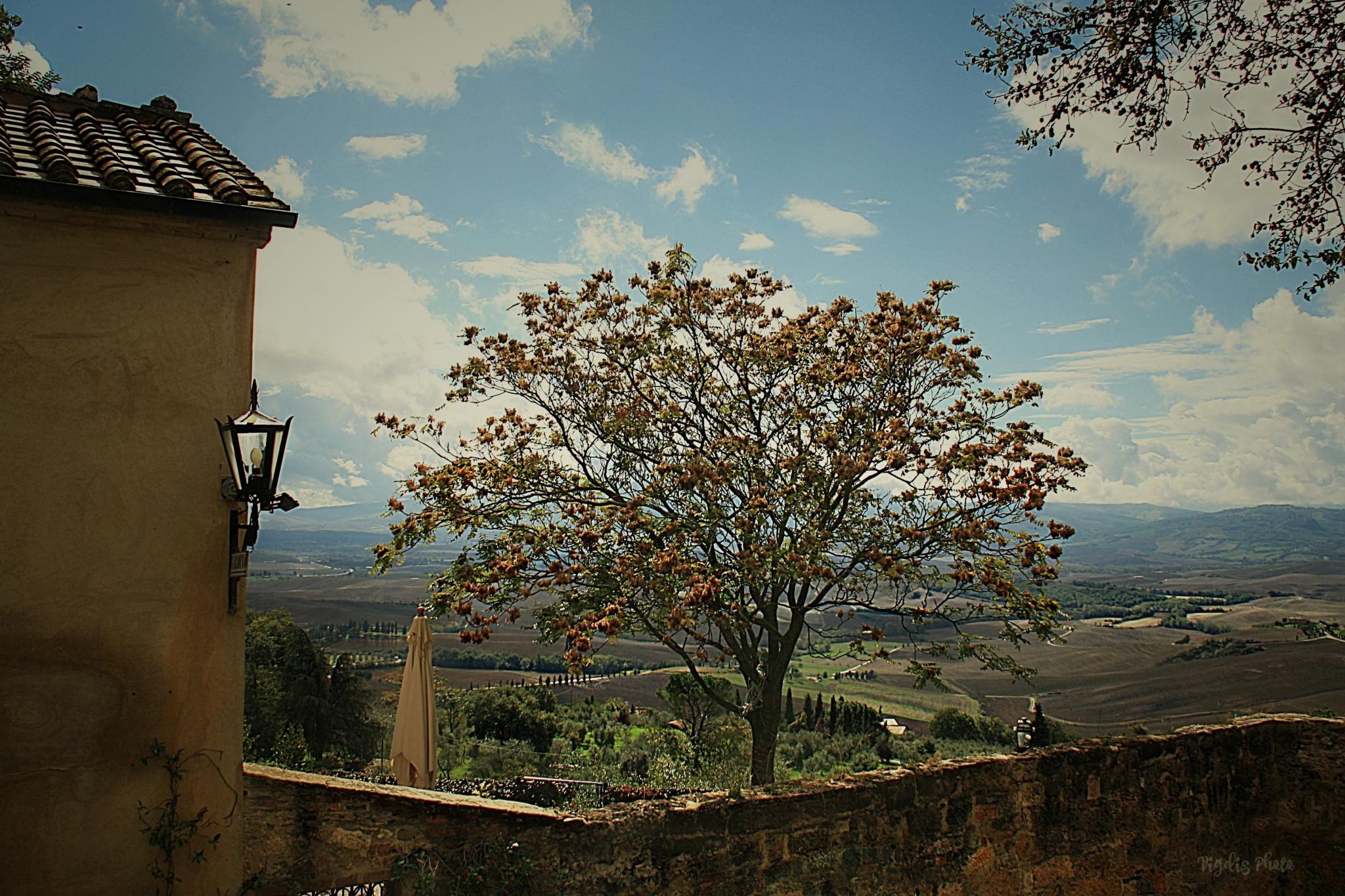 Landscape in Tuscany by Vigdis Westgård