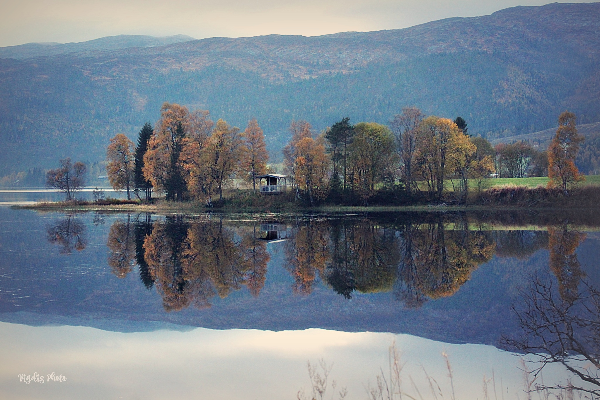 Reflection by Vigdis Westgård