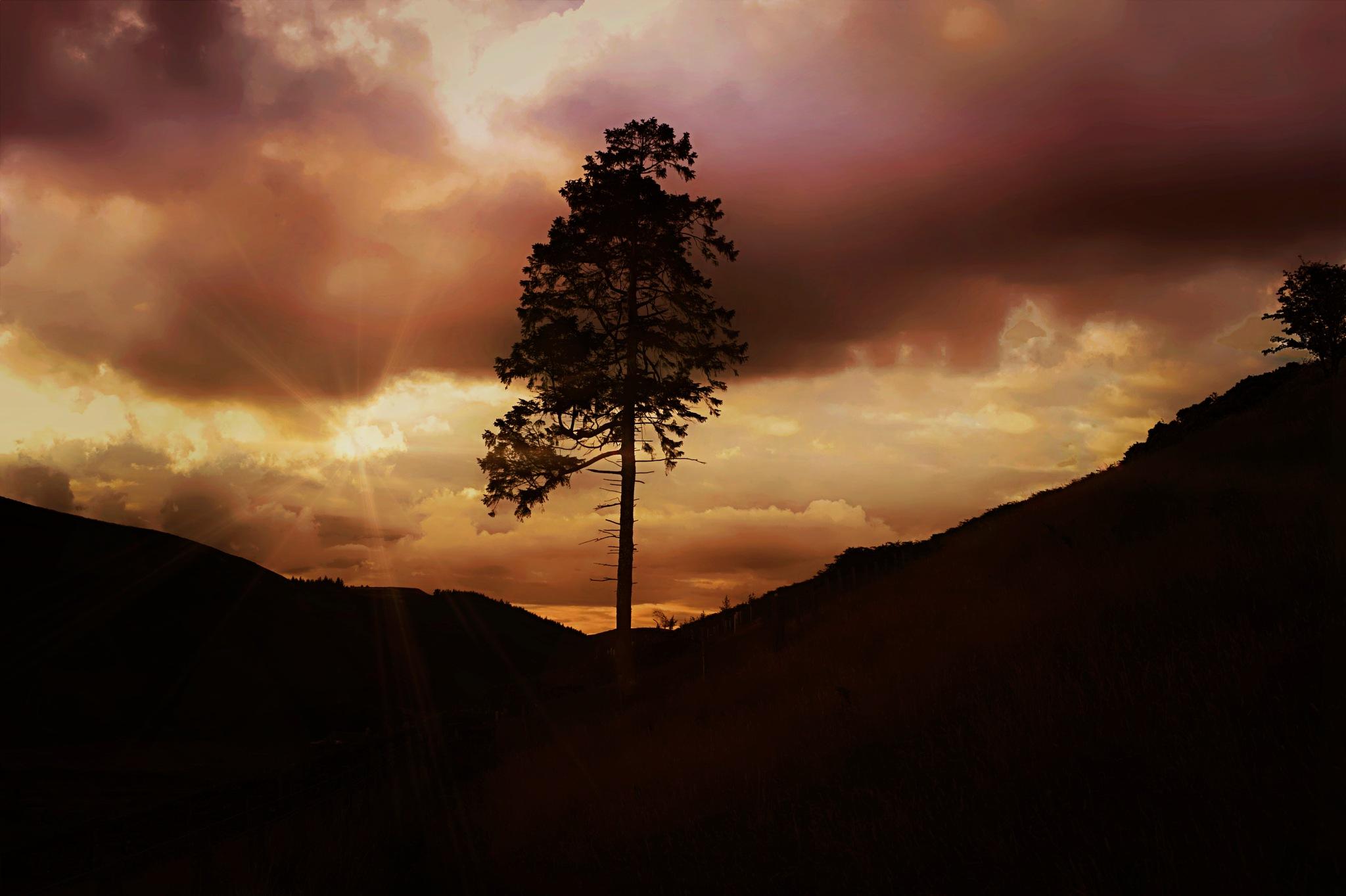 sundown  by Michael Brady