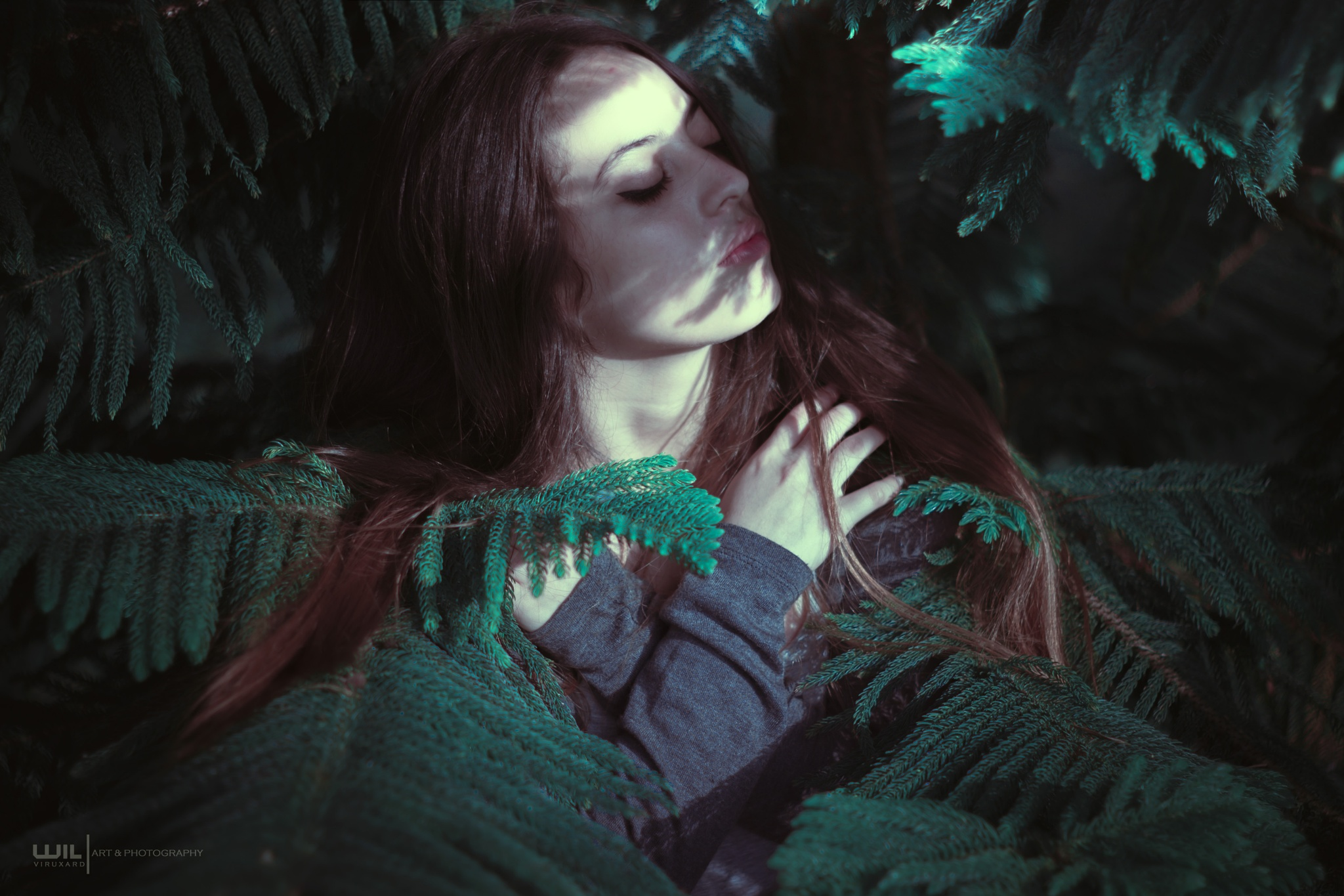 Sleep by WilArt Photography