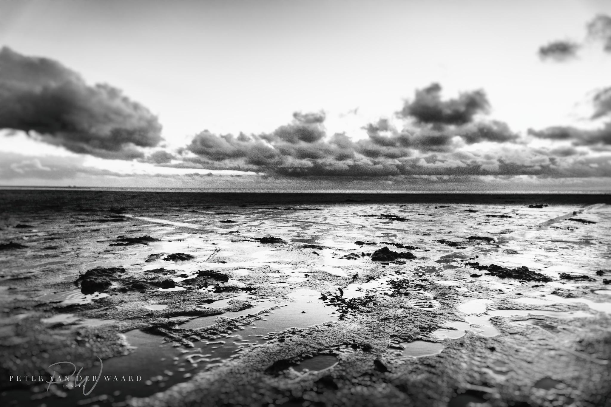 After the rain by Peter van der Waard
