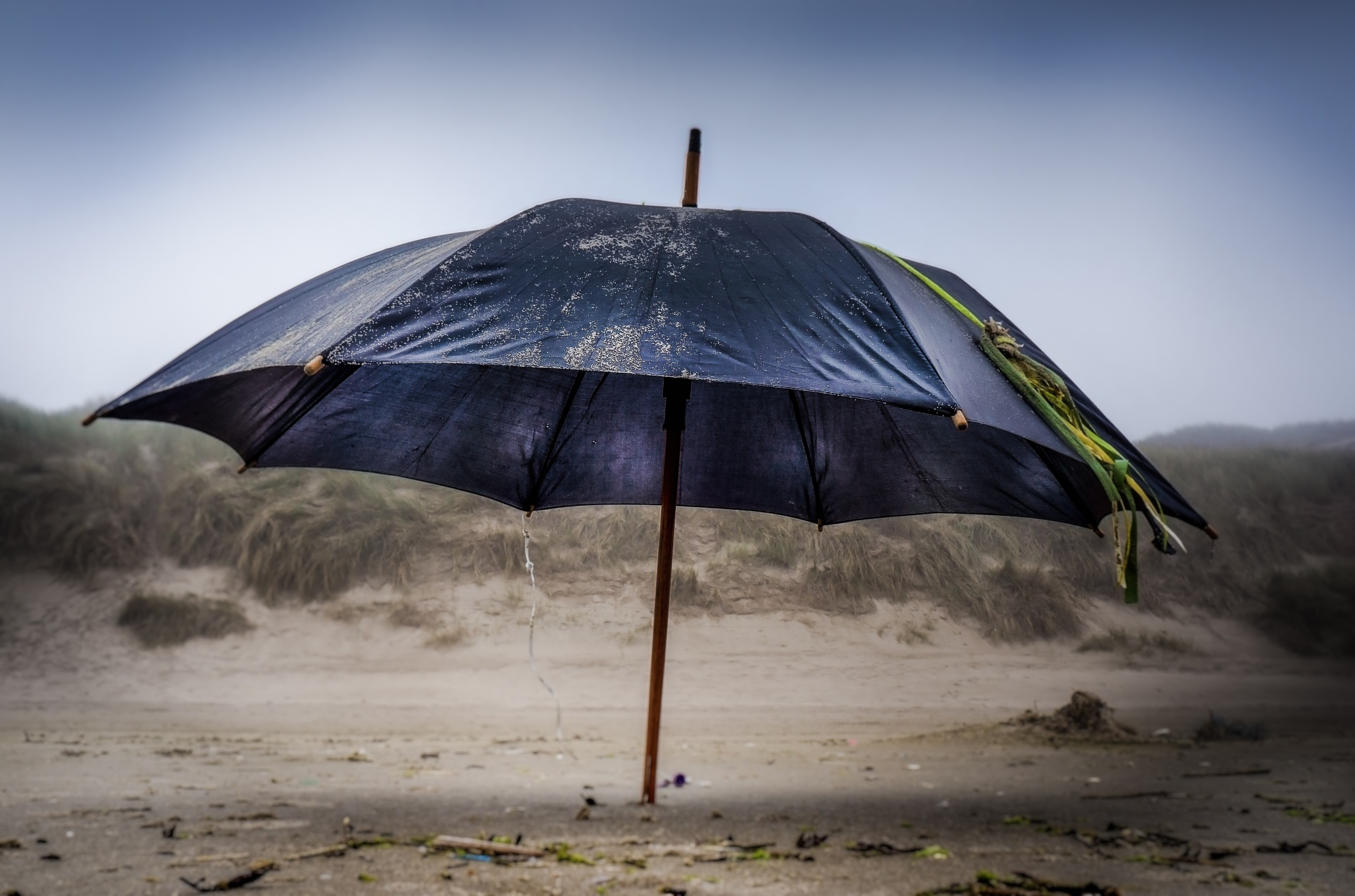 Beach 'brella by Peter van der Waard
