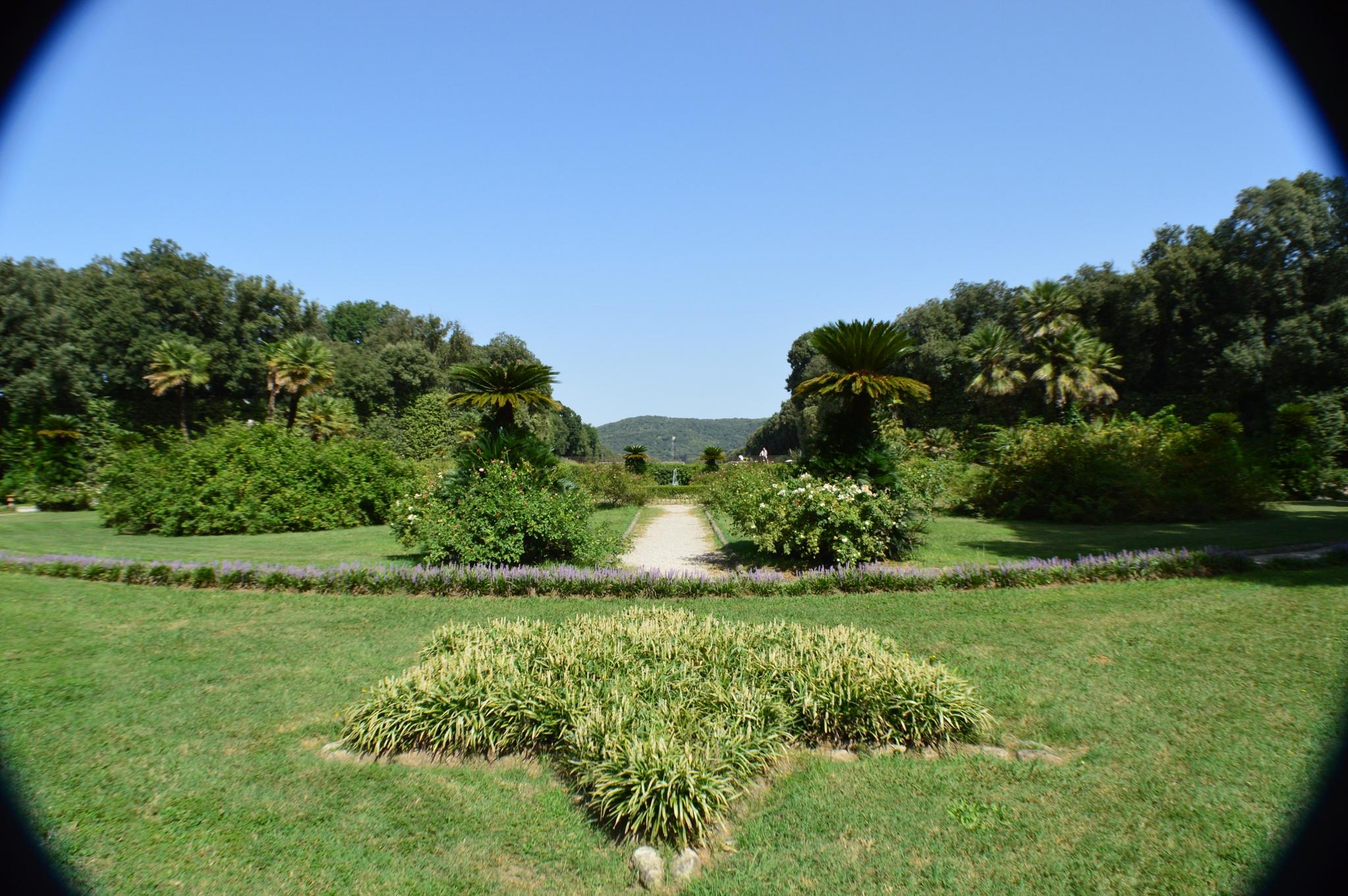 Giardini reali / Royal garden by Alessandro Deri