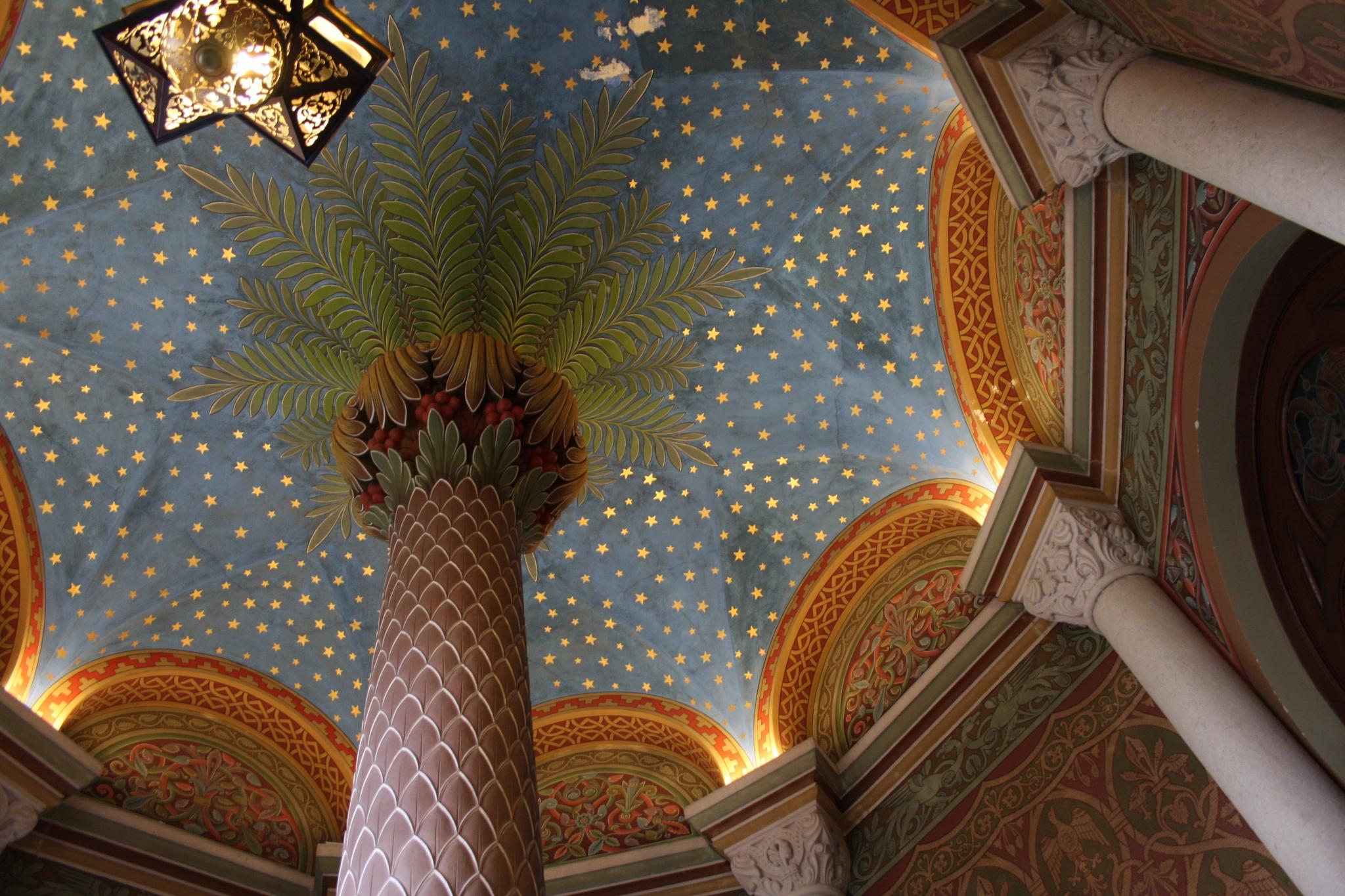 Breathe under a palm tree... by radu crivat photo graph