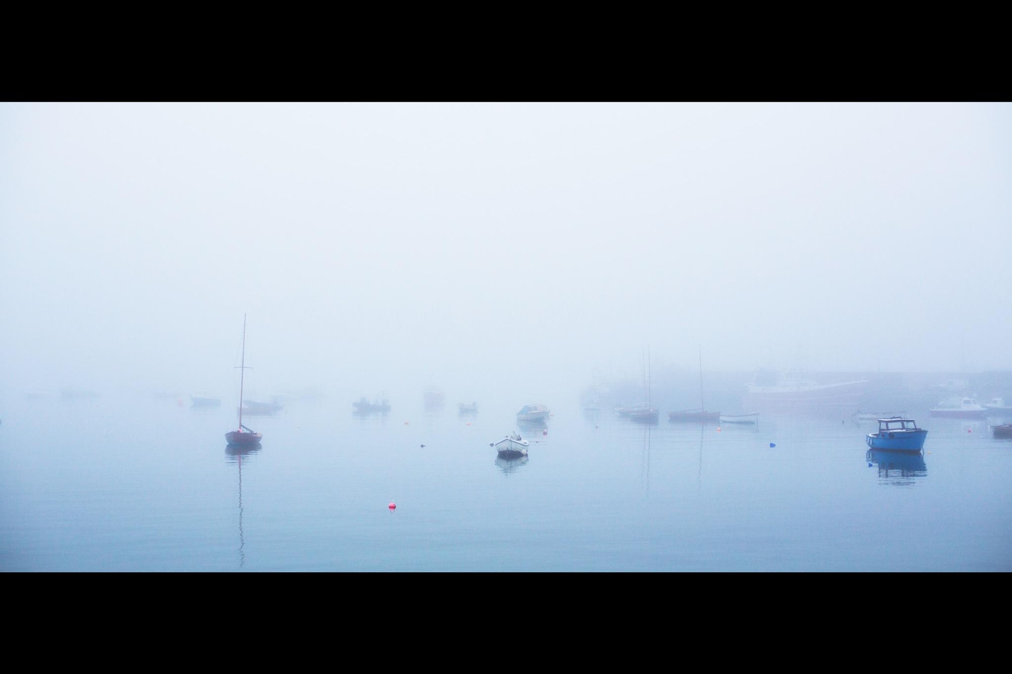 Foggy Bay by John Morgan